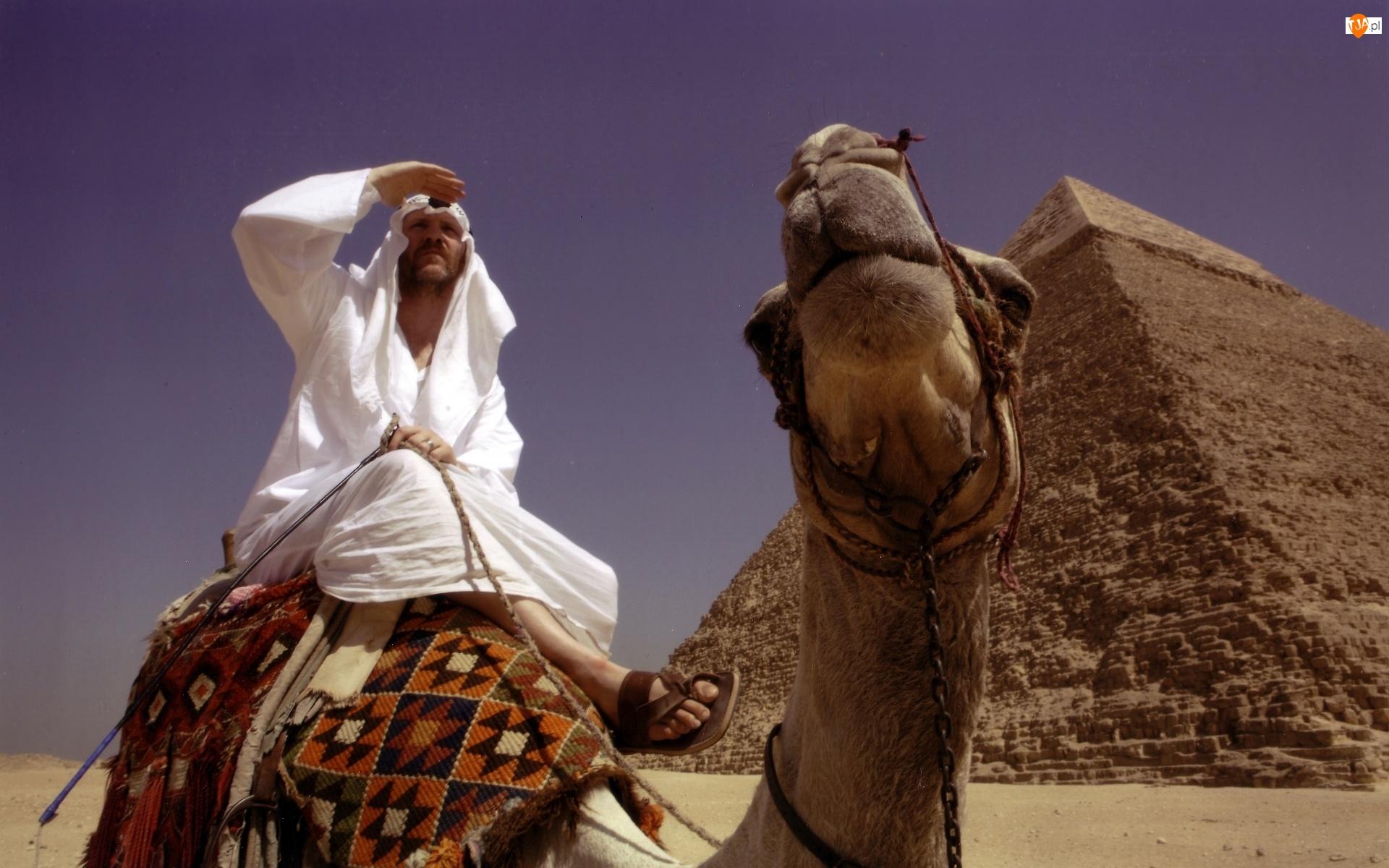 Mężczyzna, Piramida, Wielbłąd