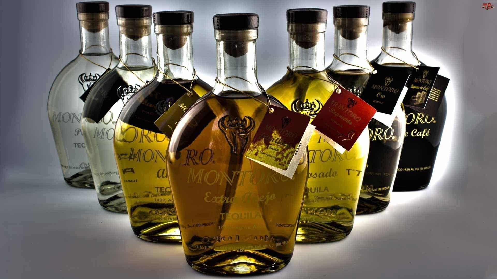 Gatunki, Tequila, Różne