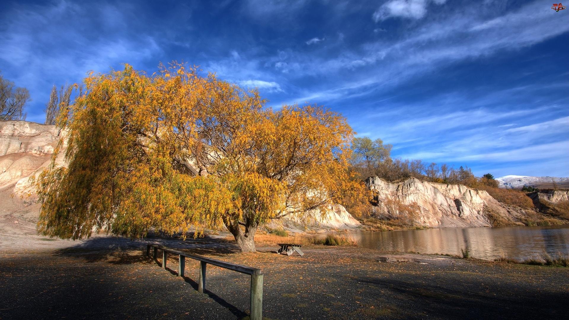 Drzewo, Jezioro, Ławka, Skały