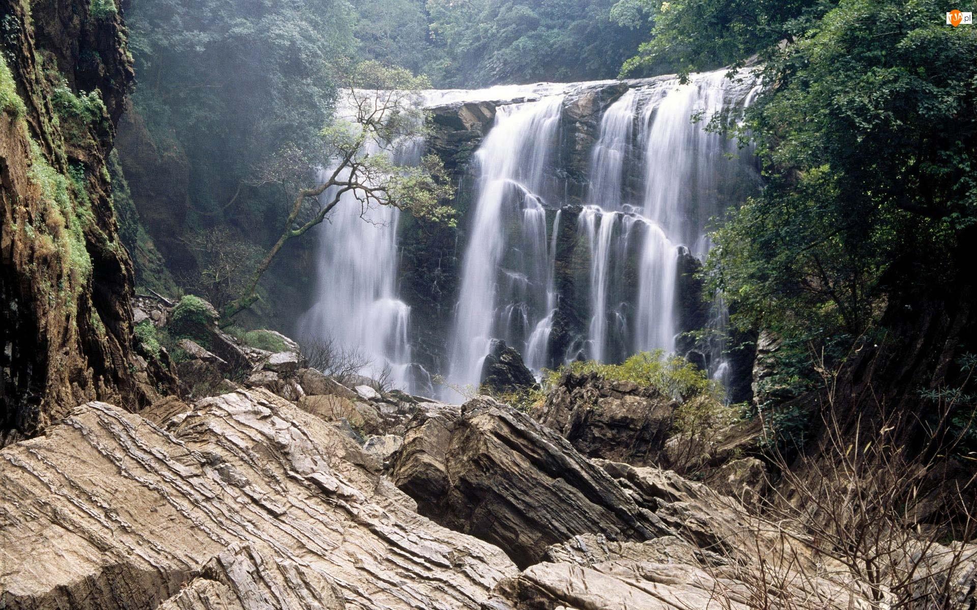 Wodospad, Skały, Wysokość, Drzewa
