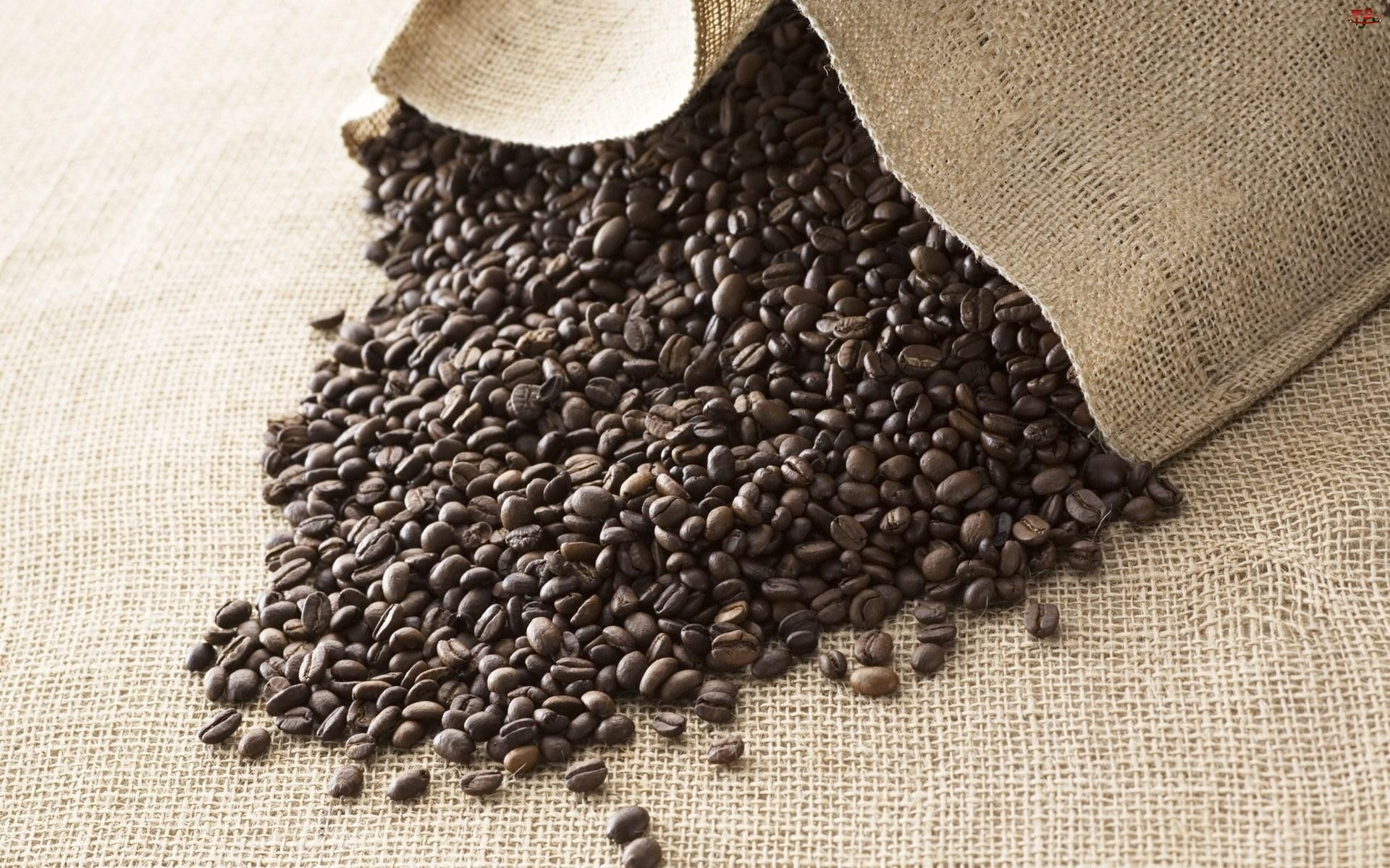 Kawy, Worek, Ziarna