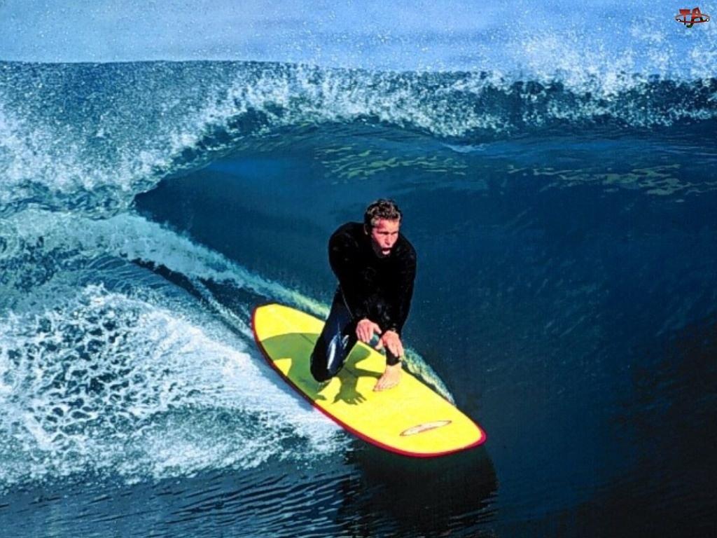 Windsurfing, morze, deska, fala
