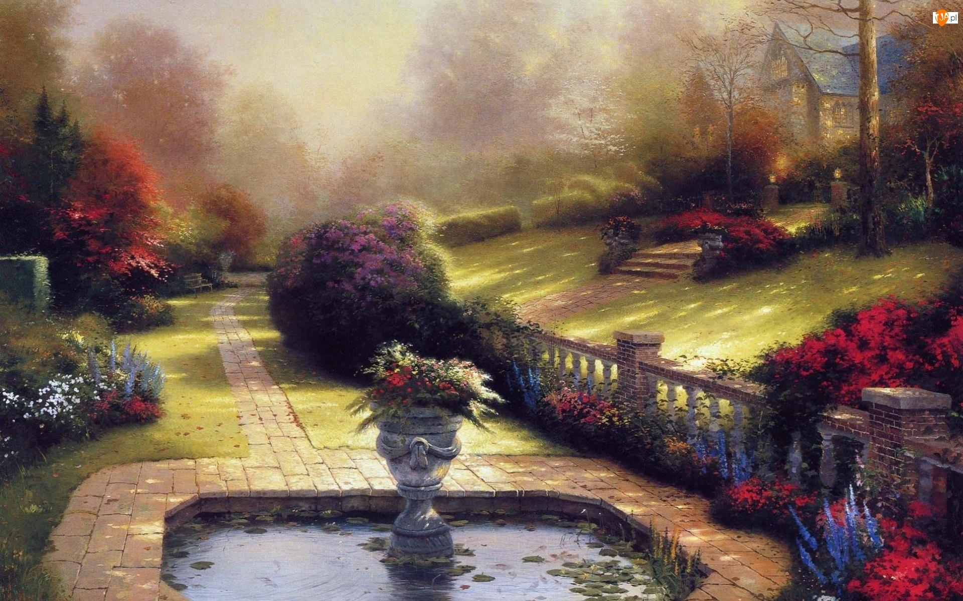 Stawek, Krzewy, Kwiaty, Trawniki