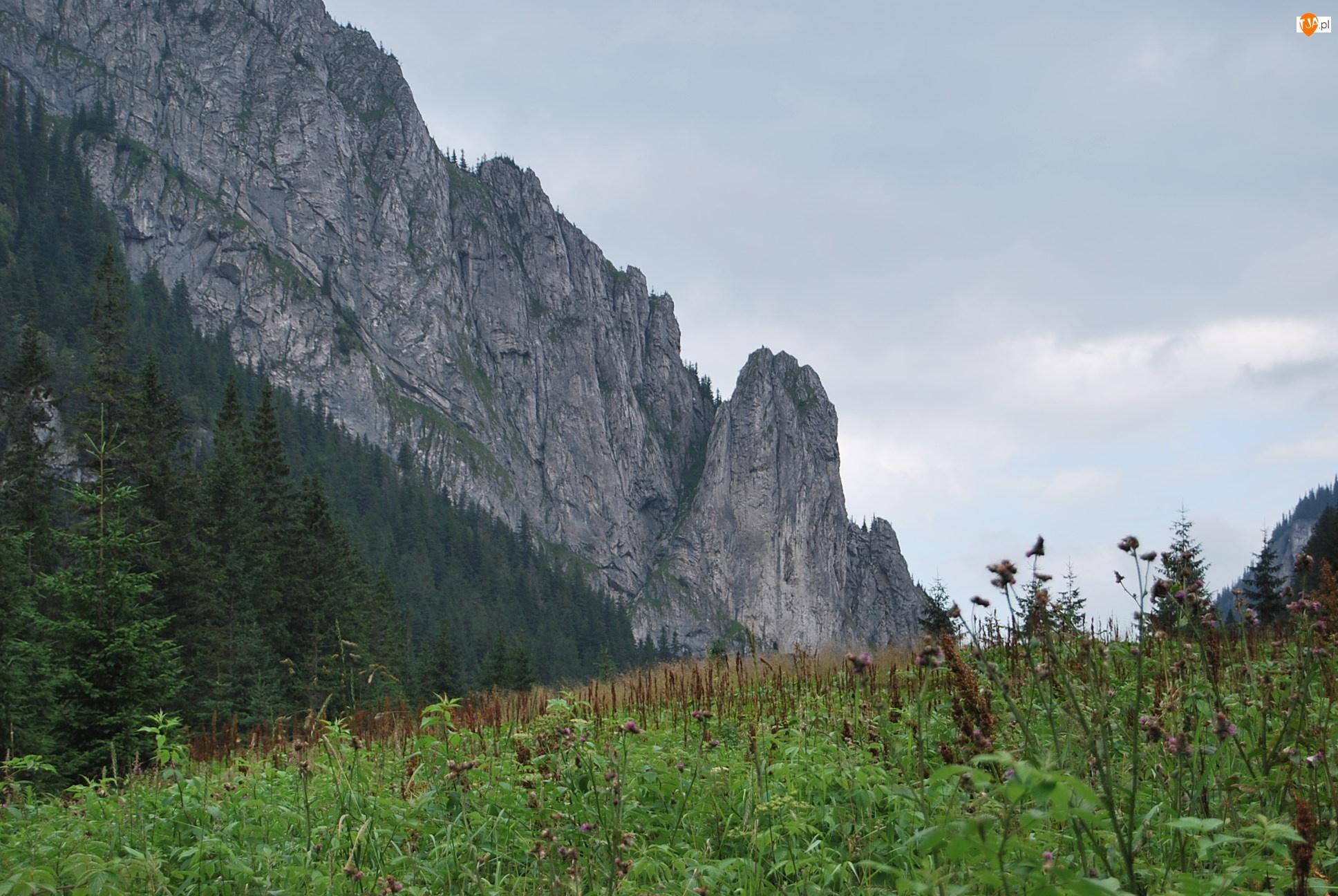 Szczyty, Tatry, Dolina Kościeliska