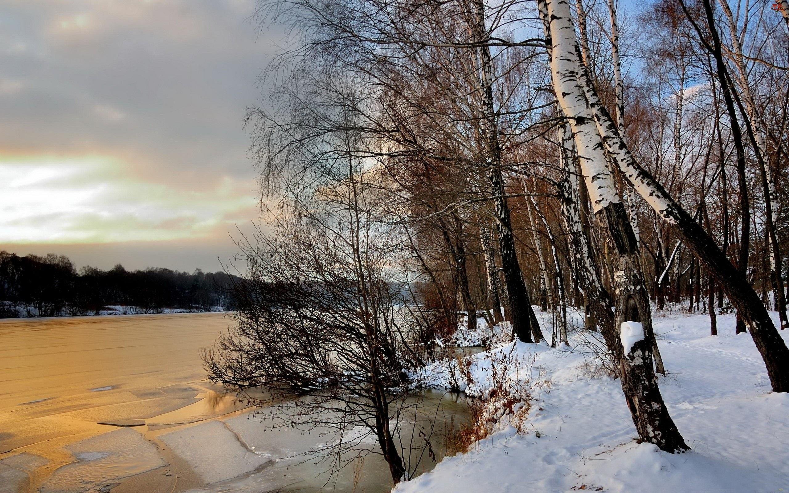 Brzozy, Kra, Śnieg, Rzeka