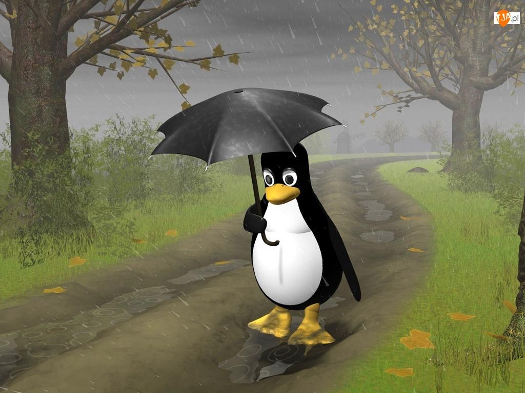 Pingwin, Linux, Parasol, Droga