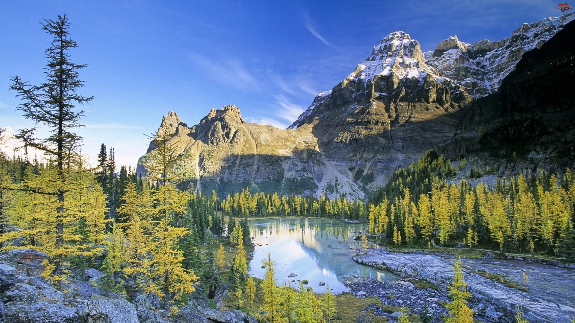 Góry, Woda, Niebo, Drzewa