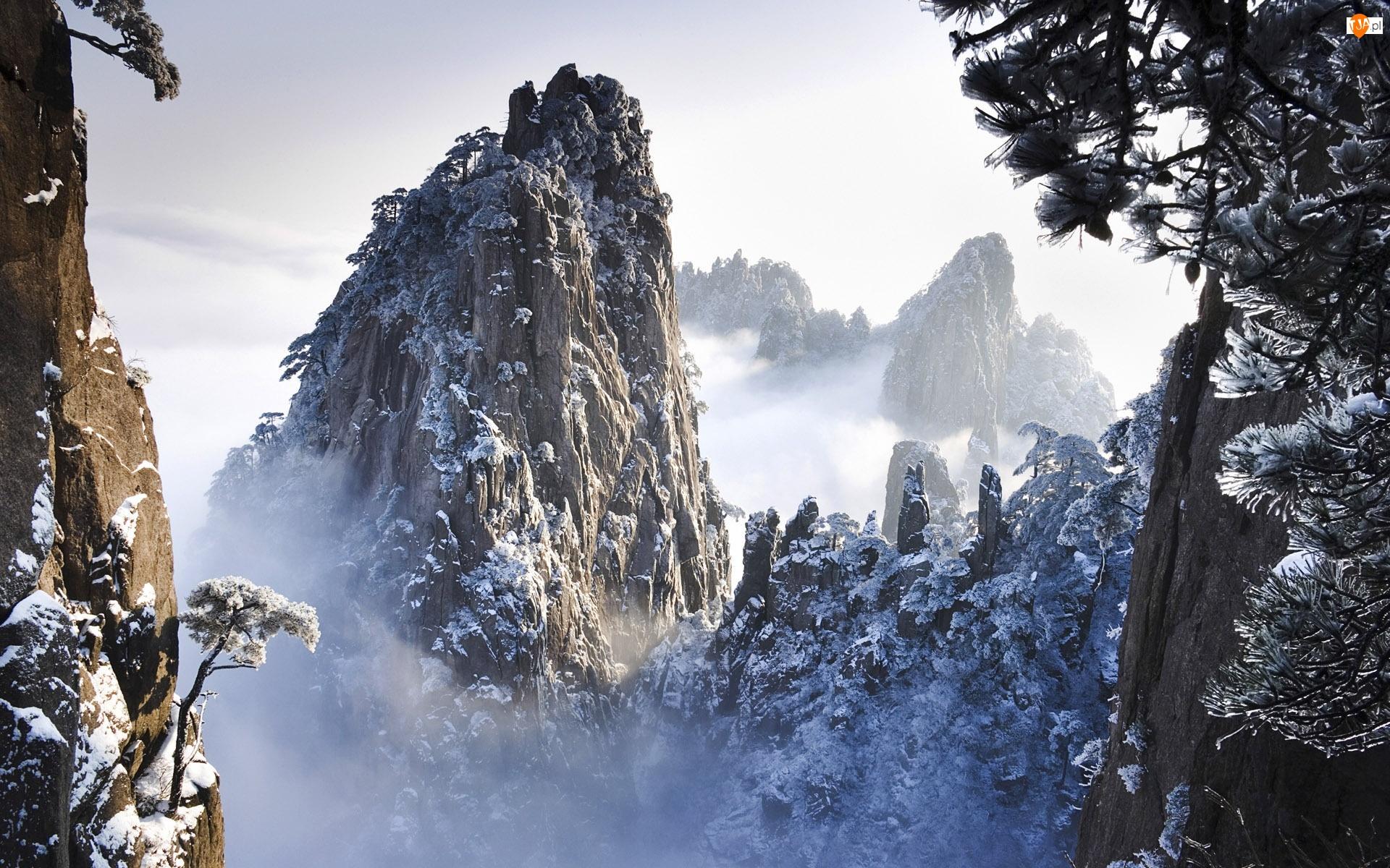 Góry, Mgła, Skaliste, Drzewa