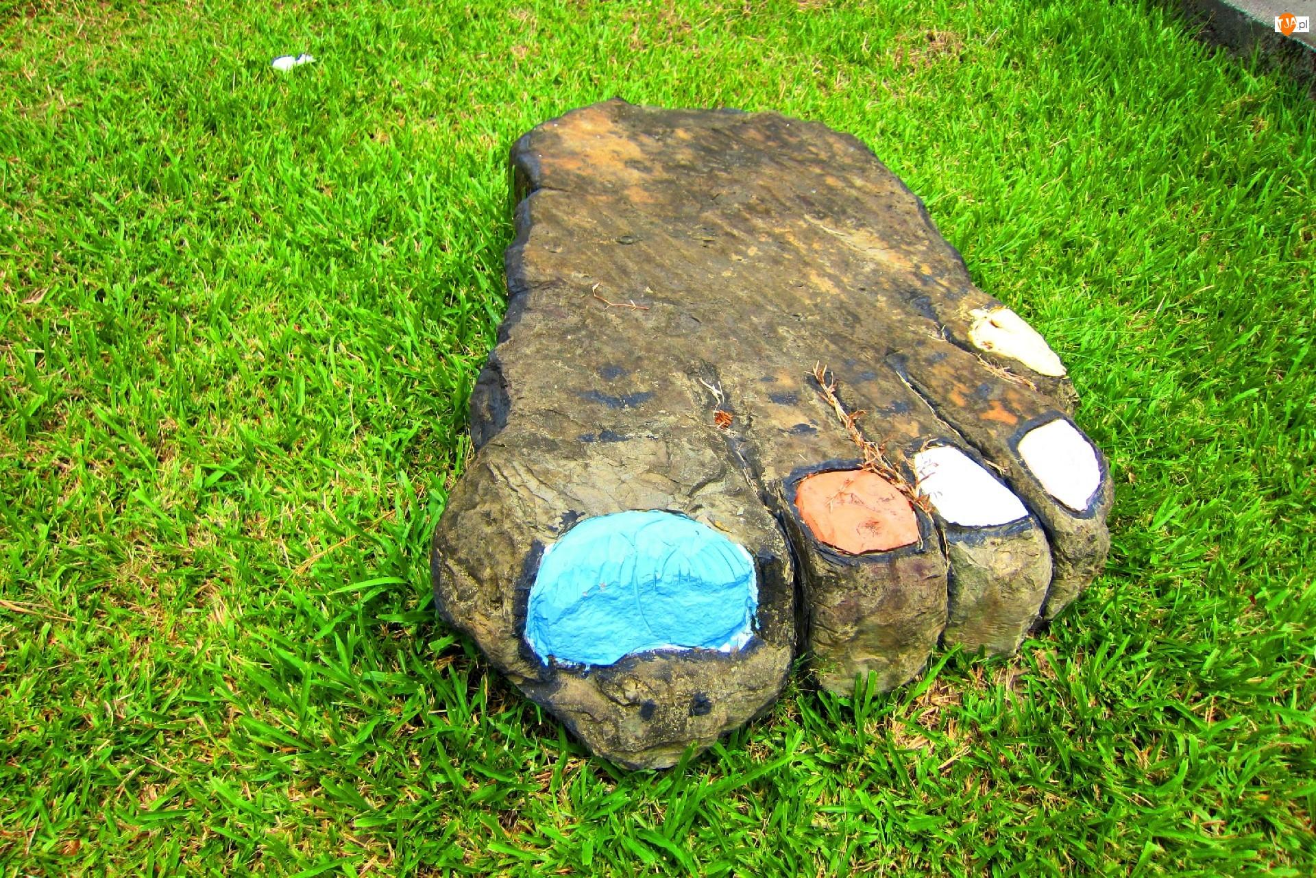 Trawa, Kamień, Stopa