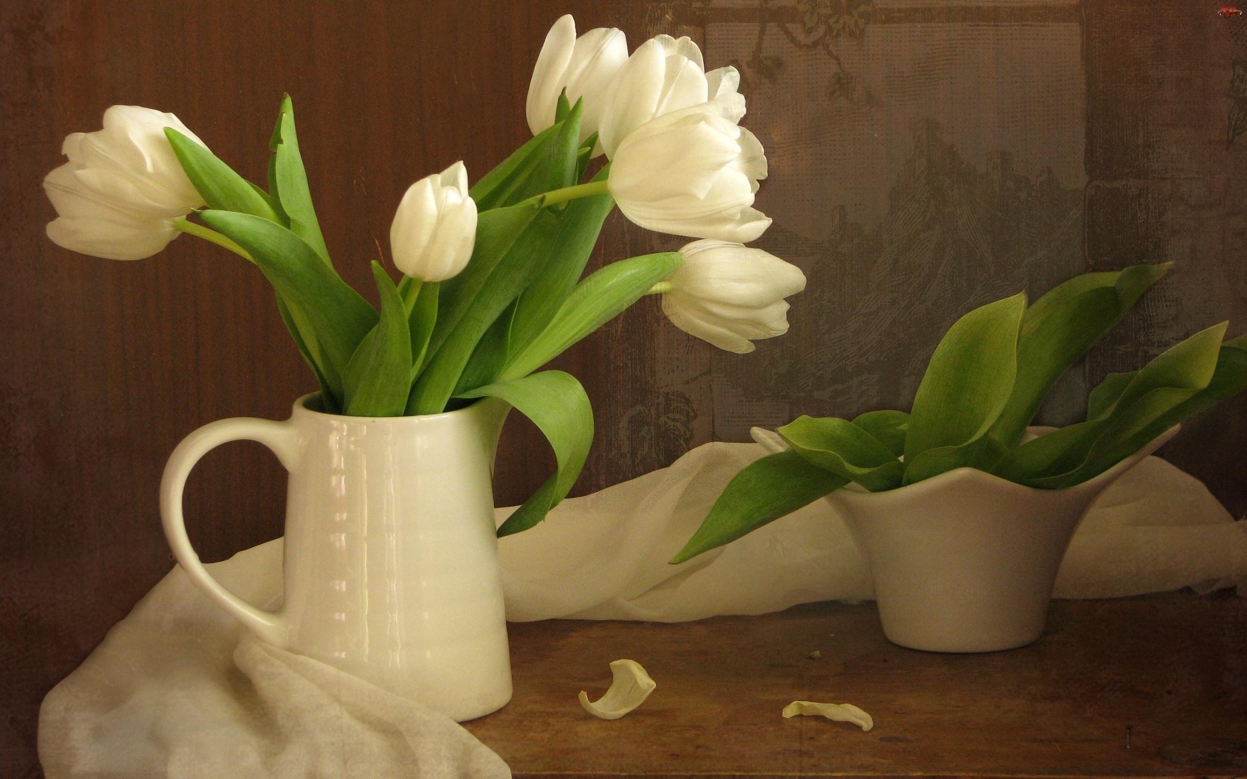 Białe, Szal, Tulipany, Porcelana