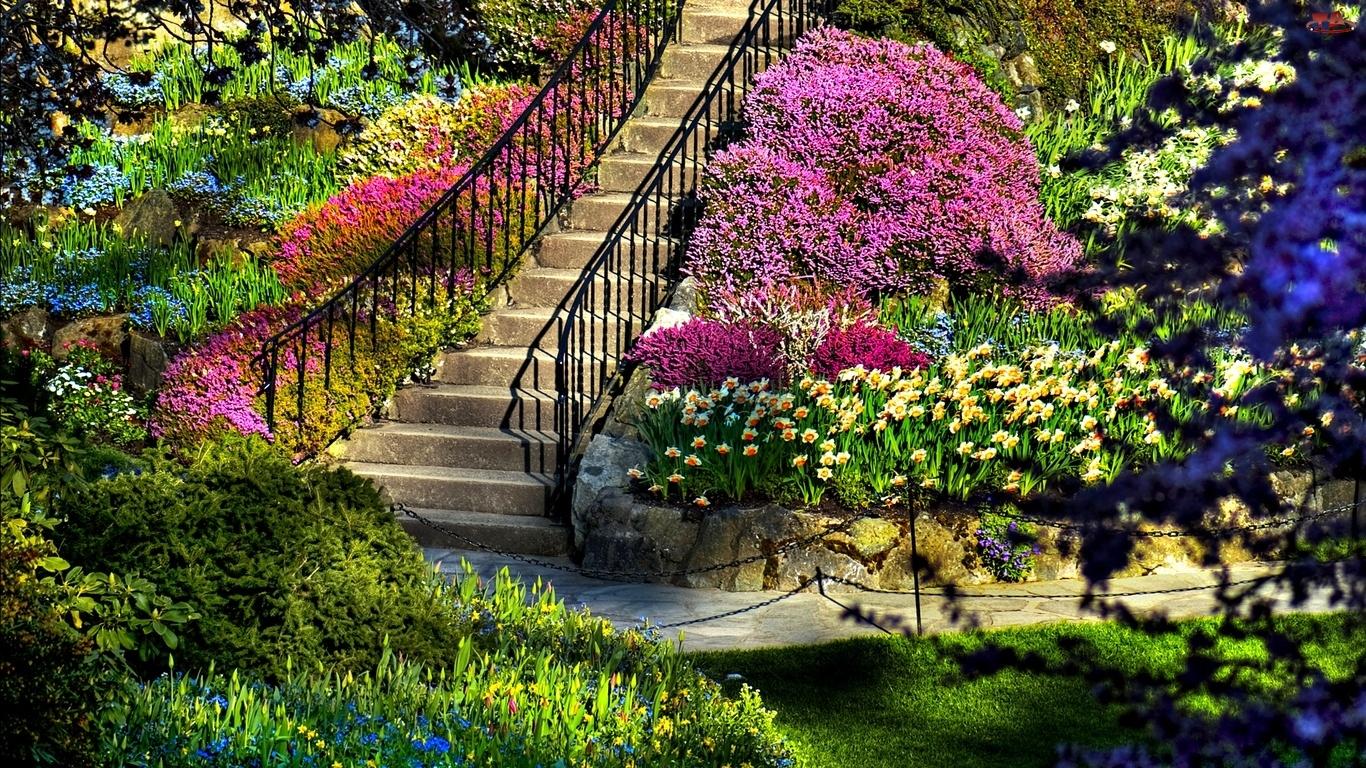 Schody Ogrod Kwiaty