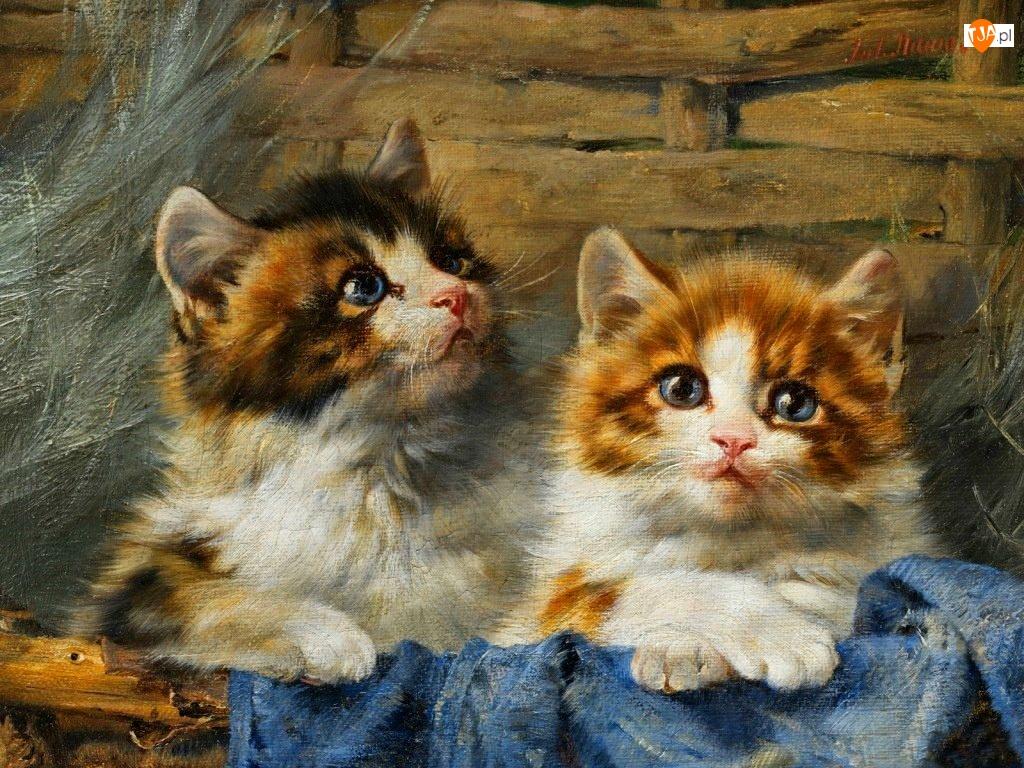 Dwa, Malarstwo, Małe, Kotki