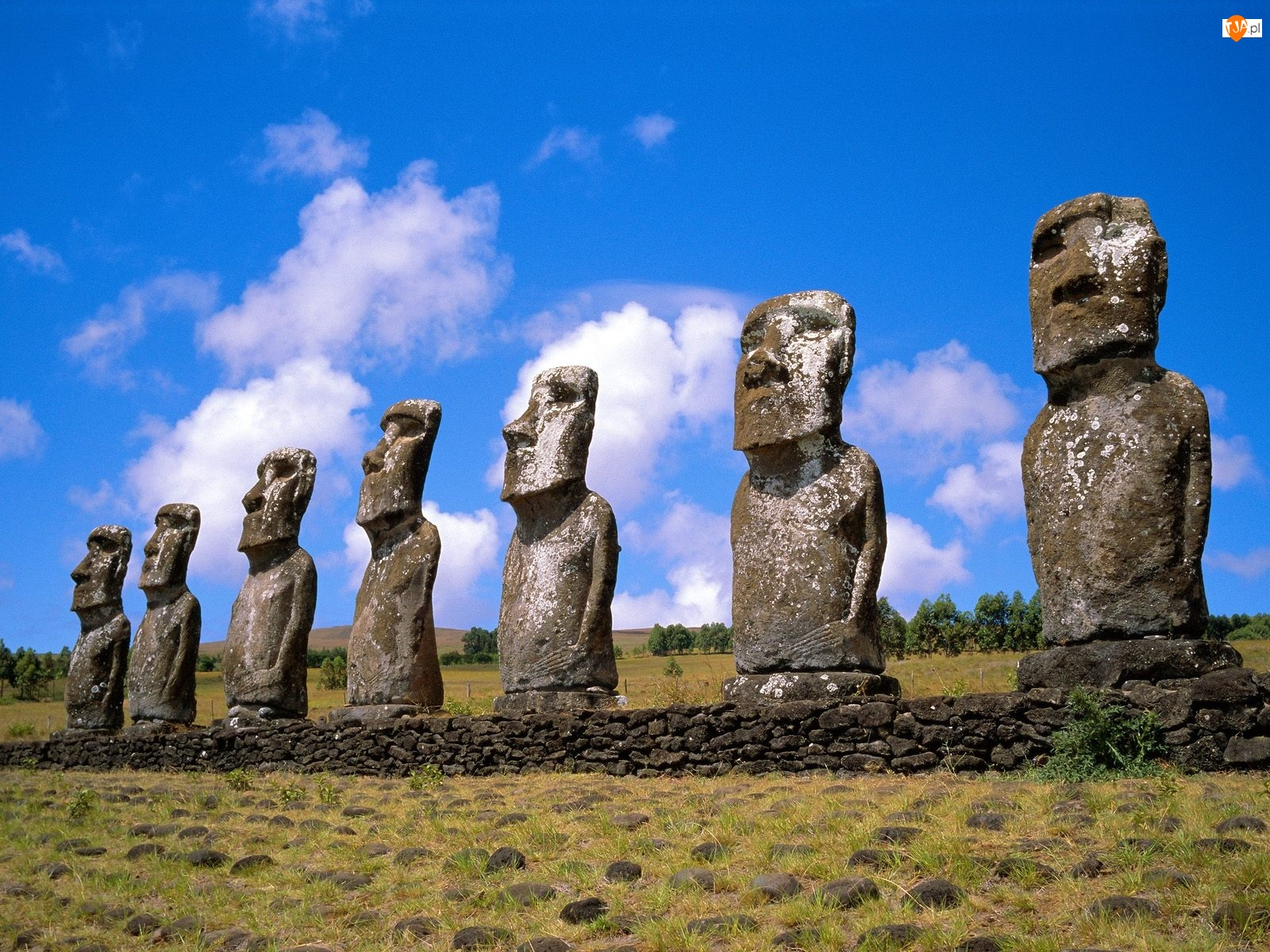 Wyspa Wielkanocna, Posągi, Moai