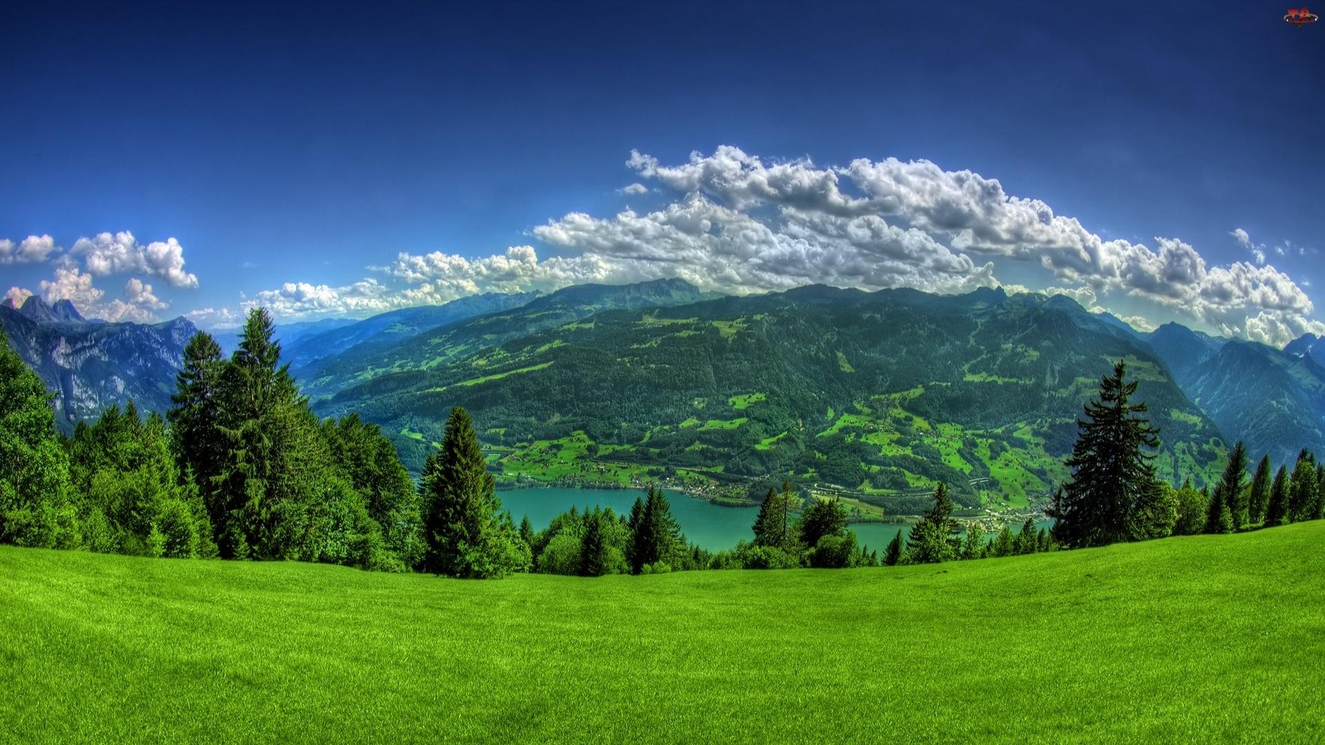 chmury, Góry, łąka, zielona, drzewa