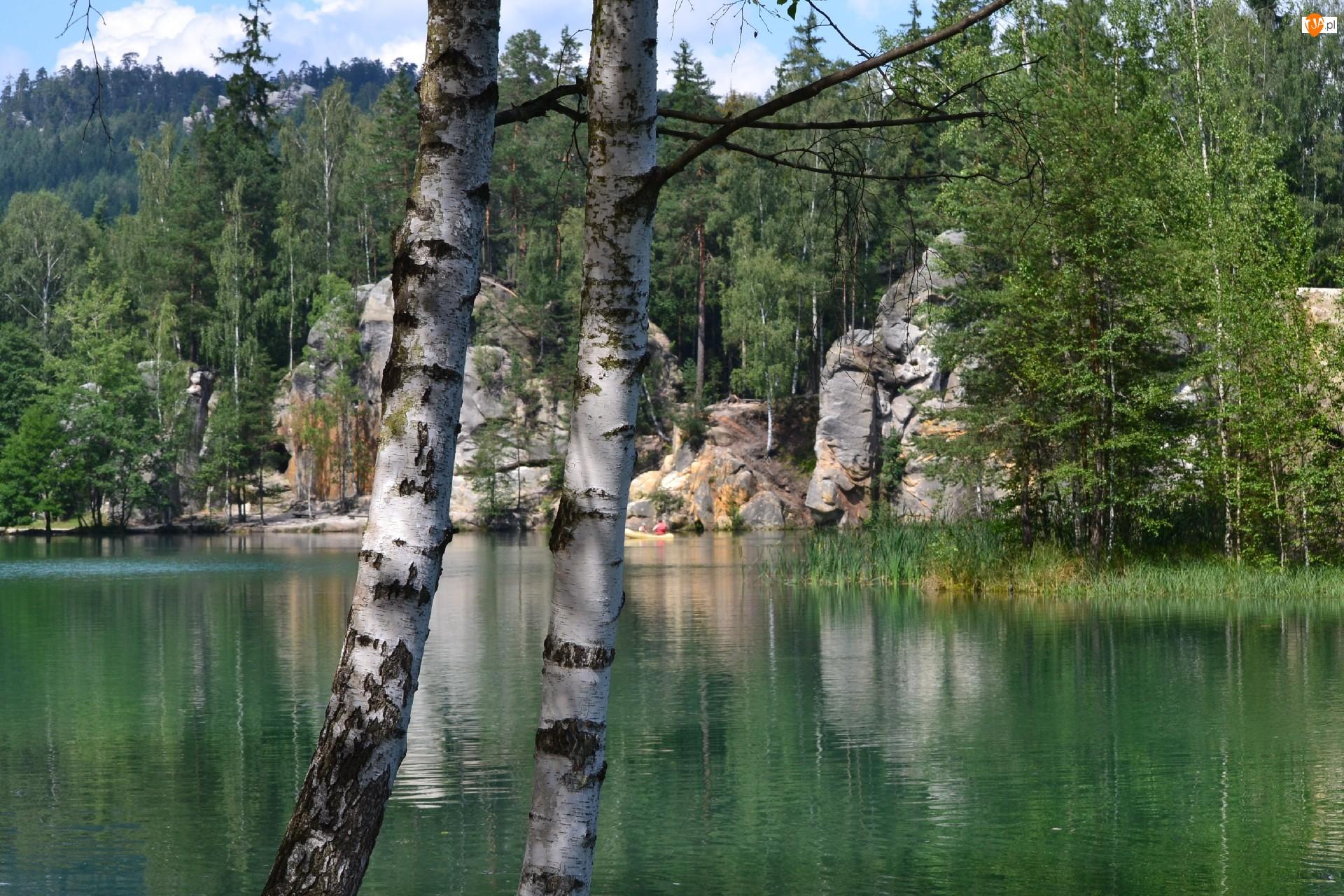 Jezioro, Brzoza, Ardspach, Czechy