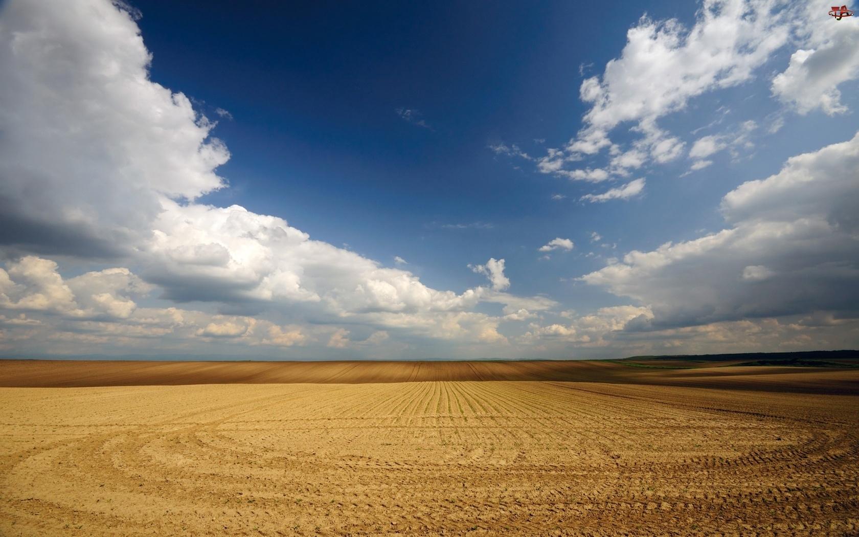 Niebo, Ziemia, Chmury, Pole