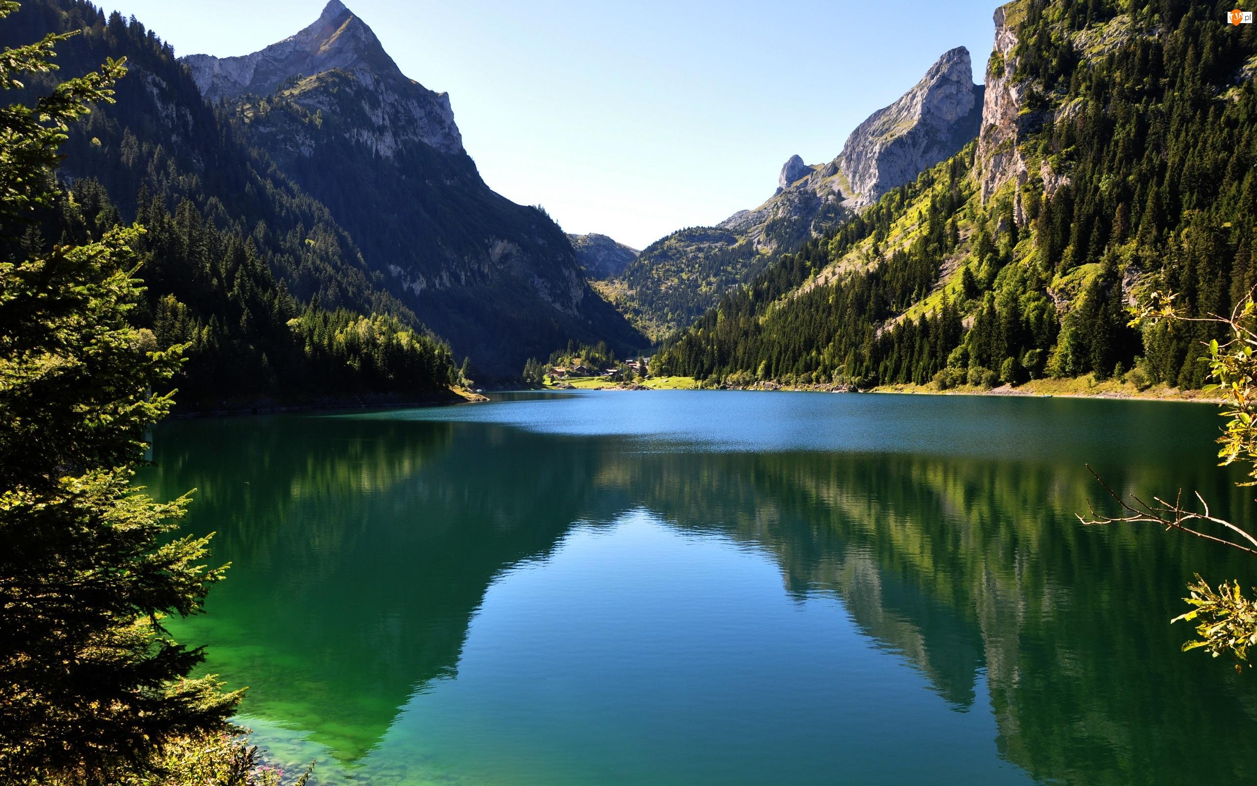 Drzewa, Jezioro, Góry