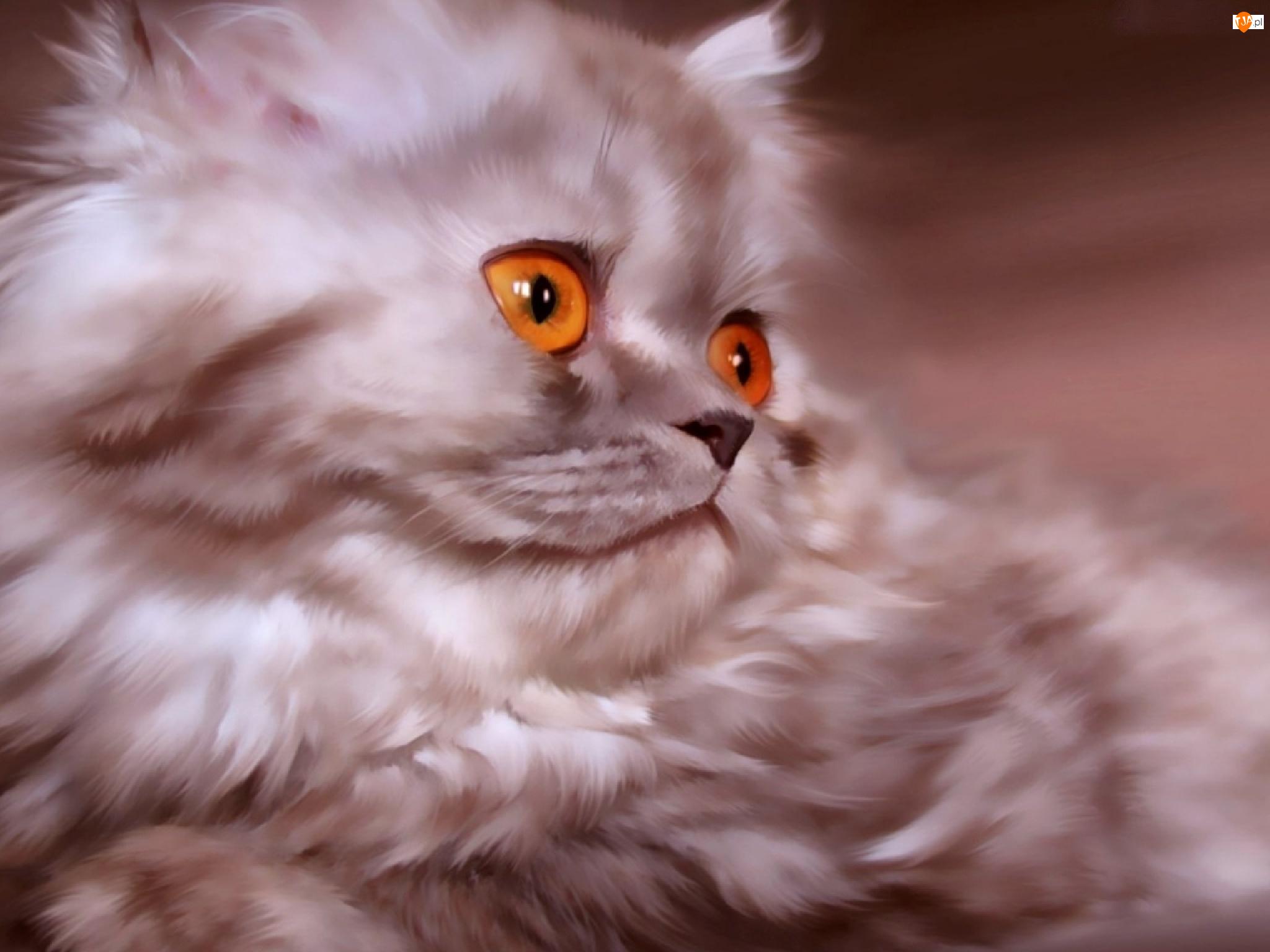 Art, Kot, Perski