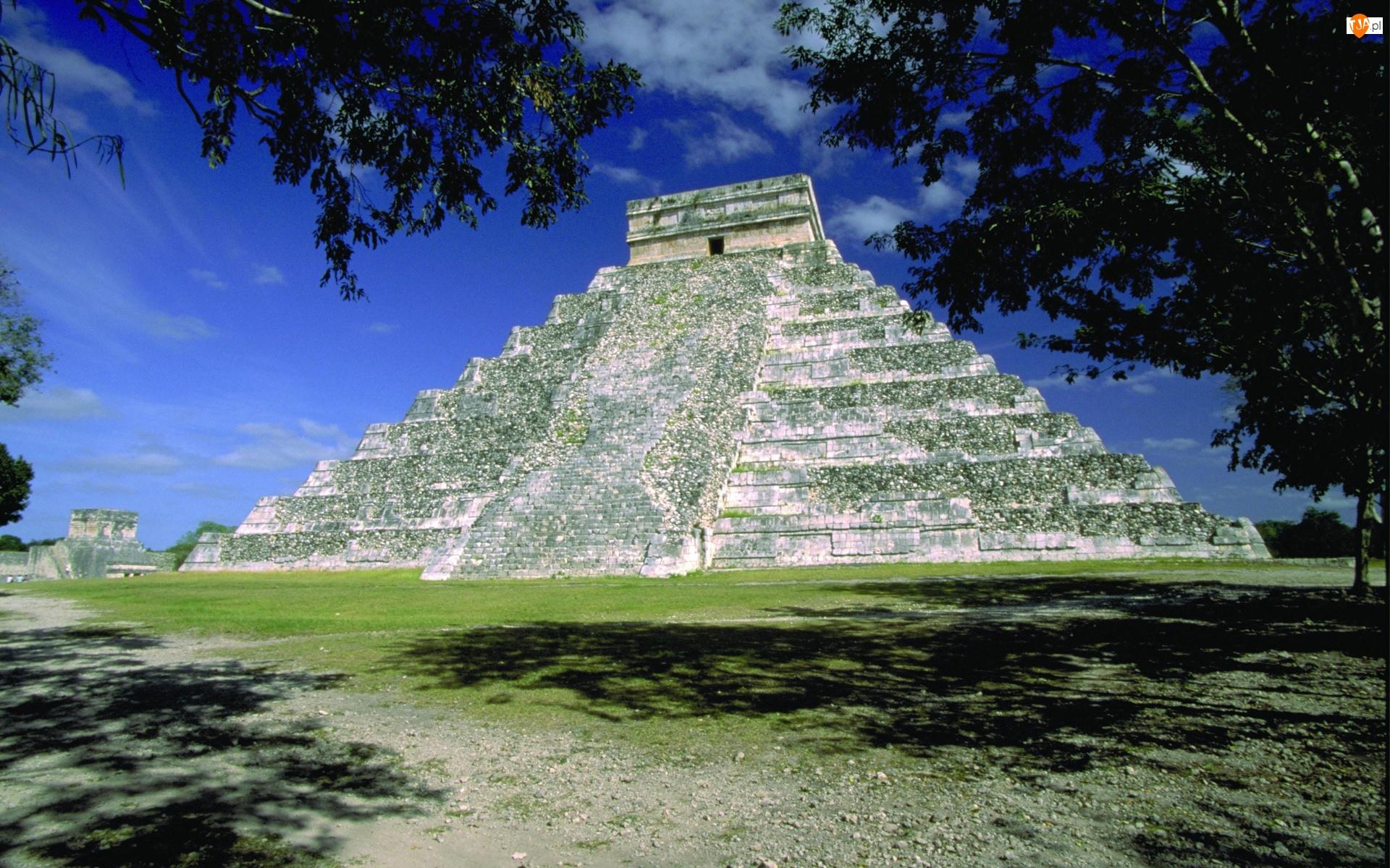 Niebo, Piramida, Drzewa