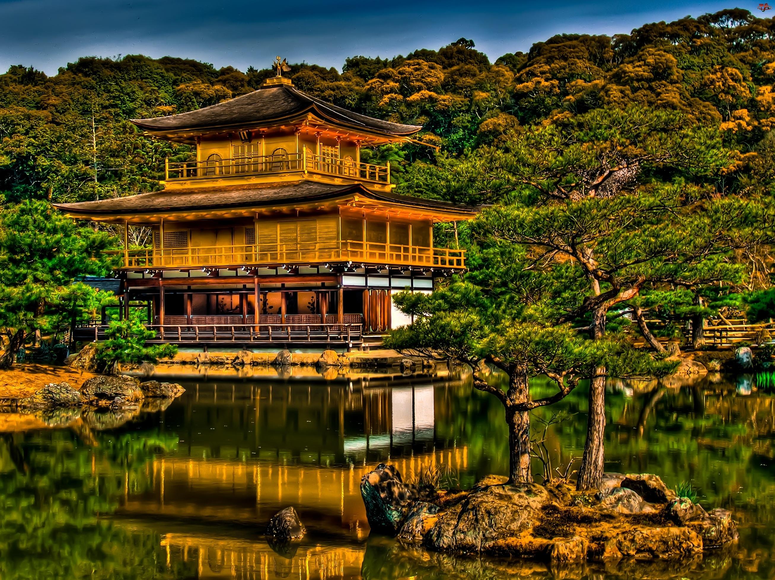 Japonia, Drzewa, Jezioro