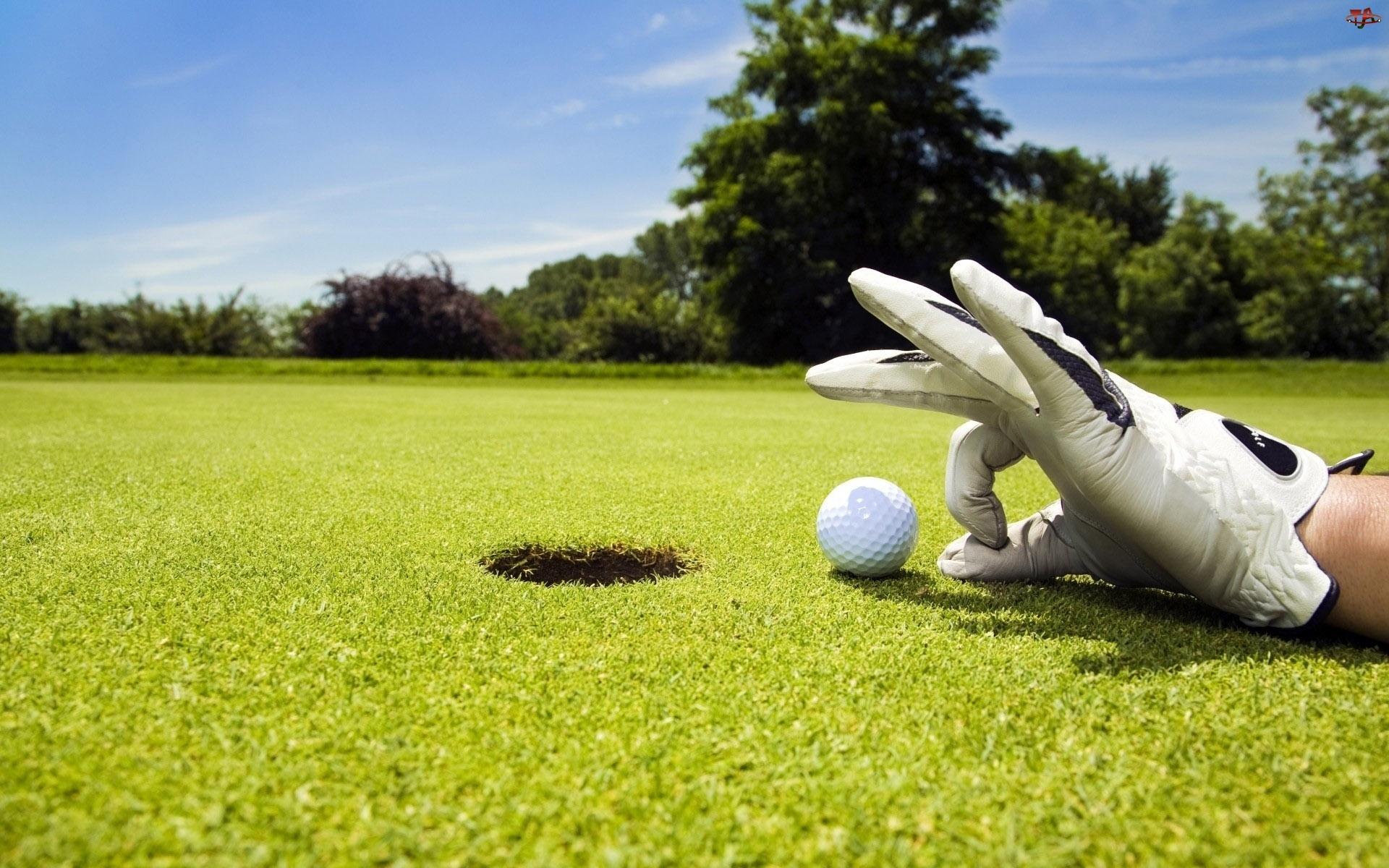 Rękawiczka, Golf, Ręka