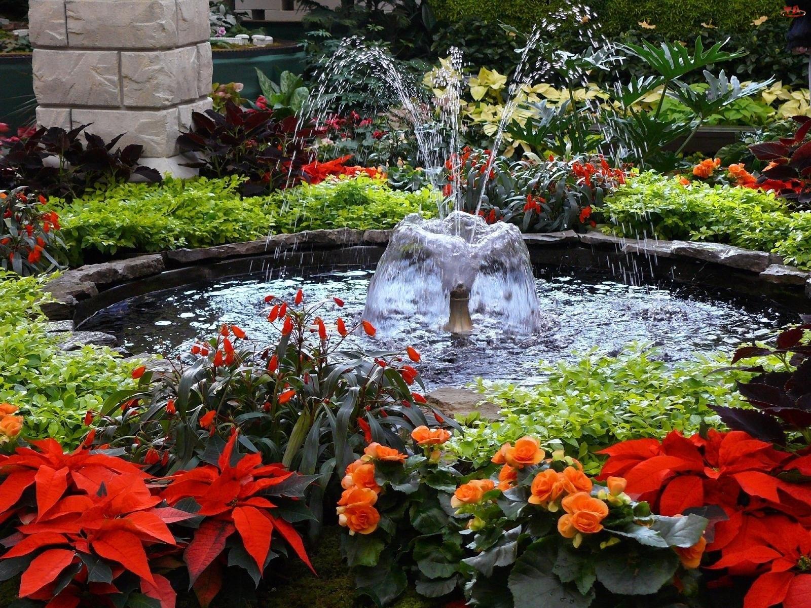 Fontanna, Ogród, Kwiaty