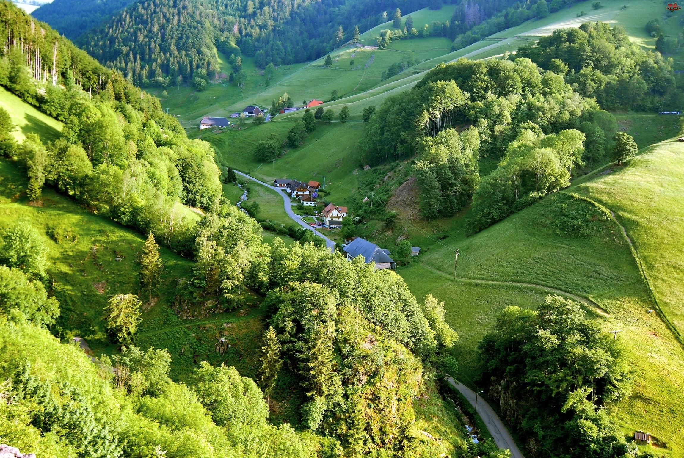 Wioska Schwarzwald, Droga, Góry, Drzewa, Doliny