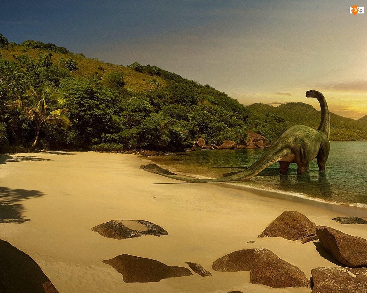 Skały, Wybrzeże, Dinozaur
