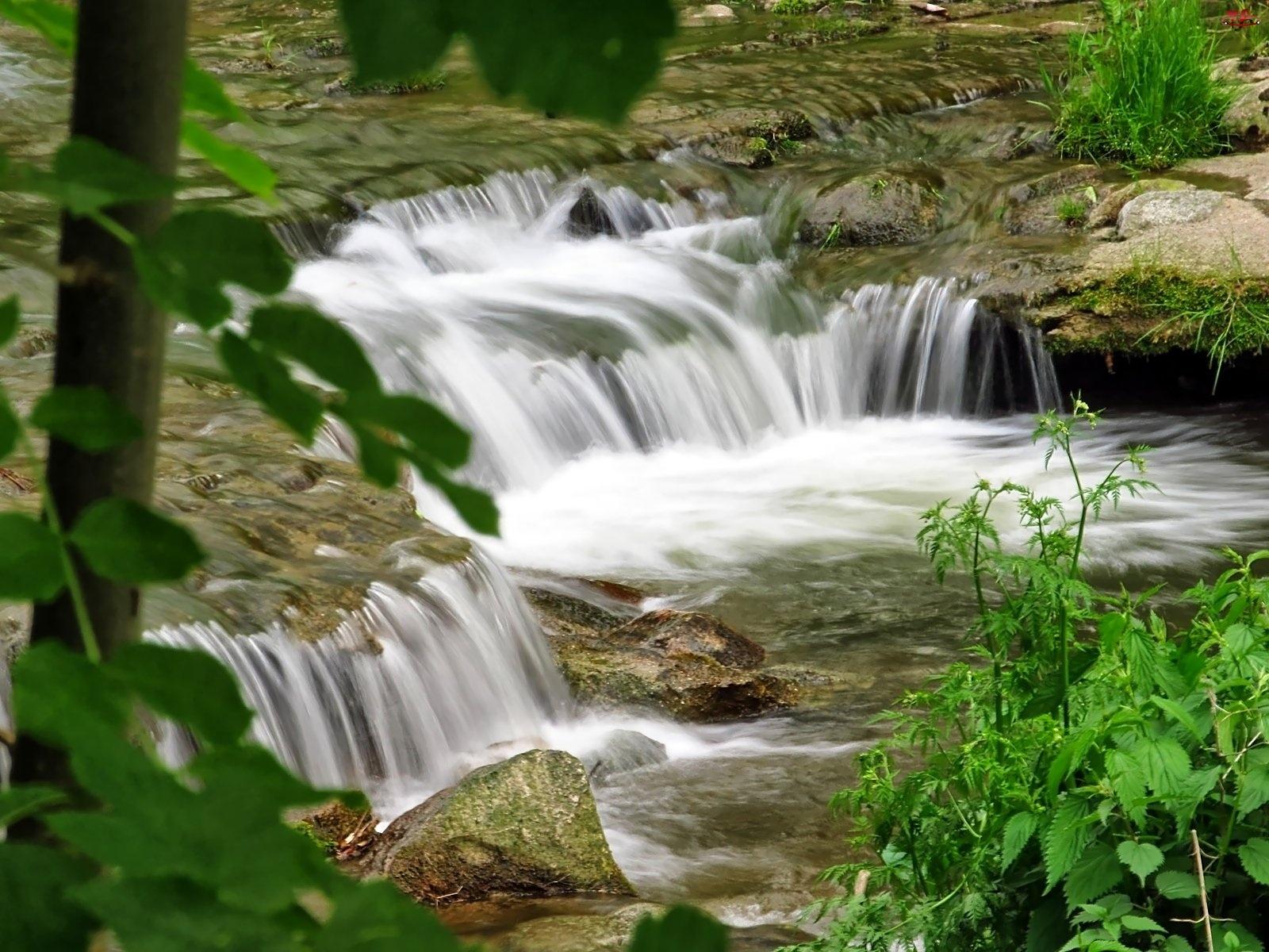 Liście, Kaskada, Rzeka