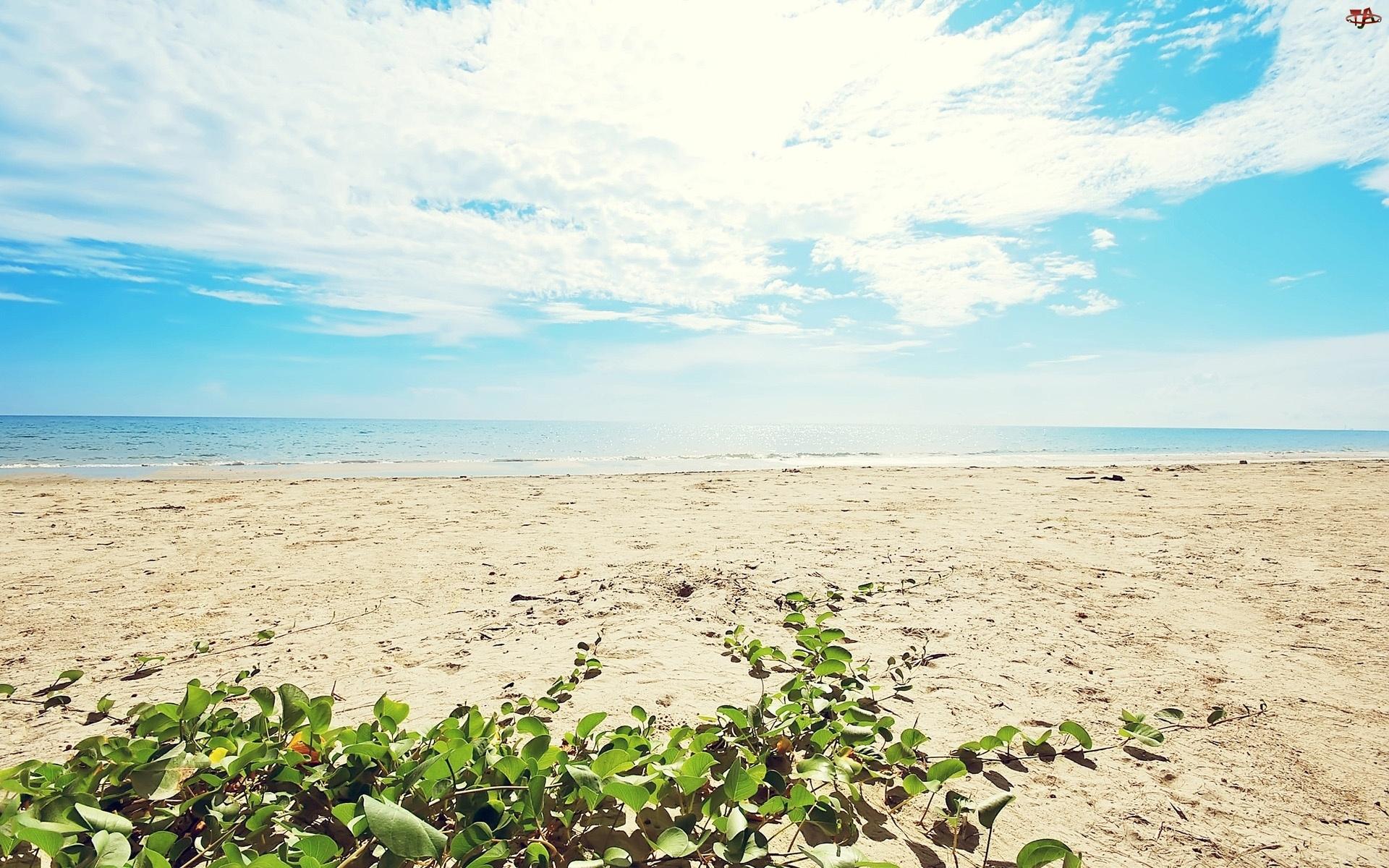 Niebo, Morze, Plaża