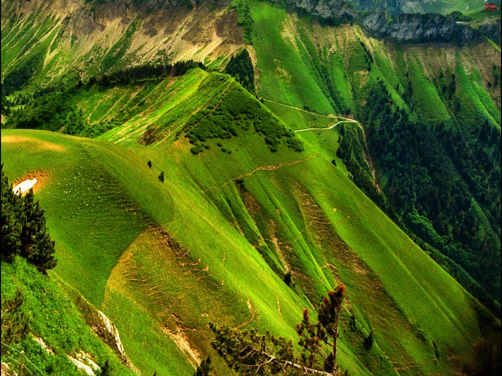 Alpy, Zielone, Góry