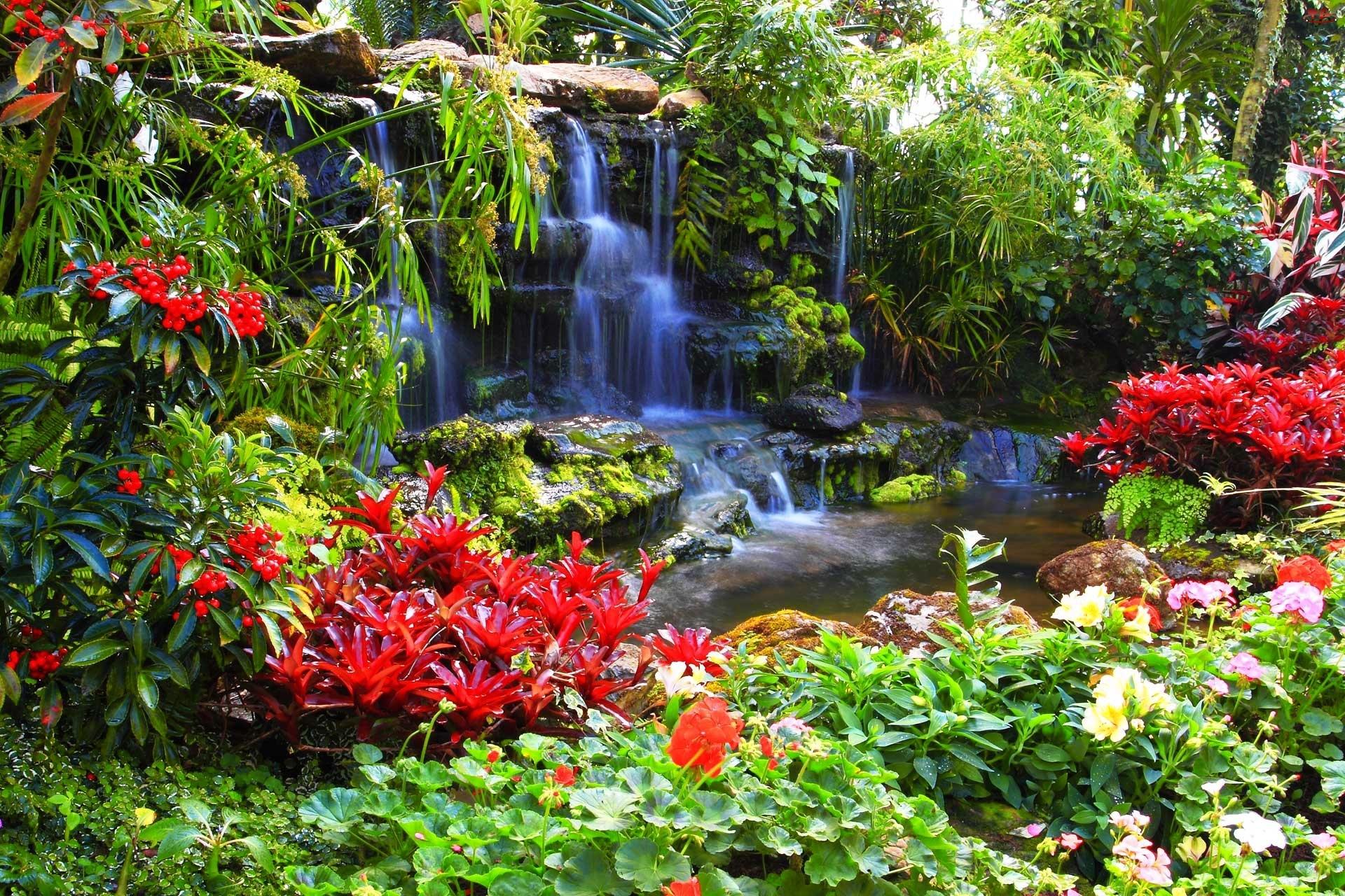 Wodospad, Kwiaty
