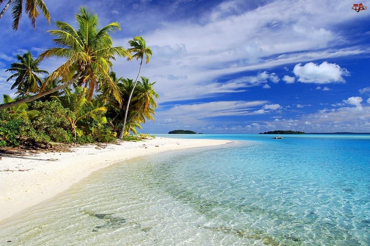 Palmy, Aitutaki, Woda, Islandia, Piasek