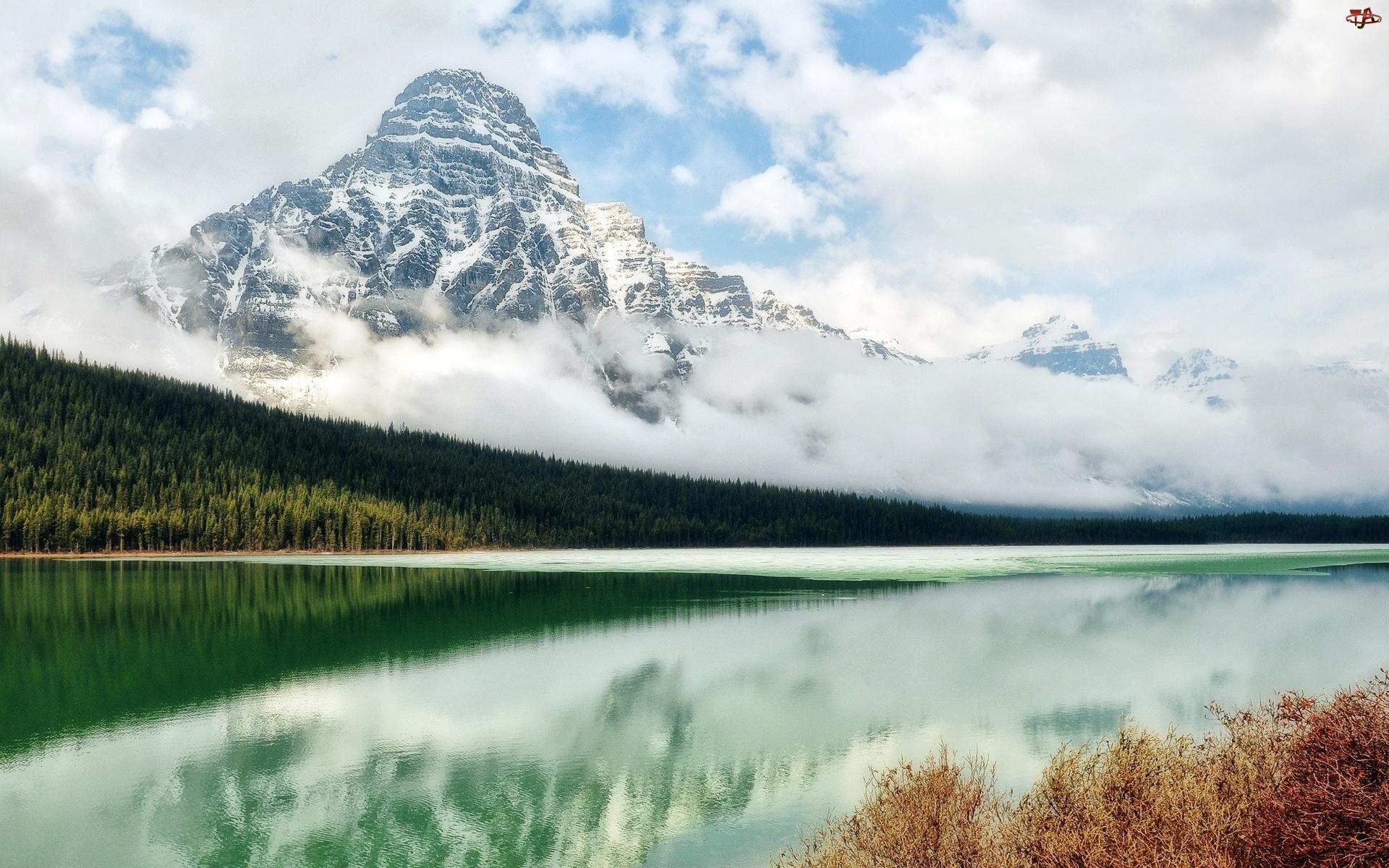 Las, Góra, Śnieg, Wysokość, Jezioro