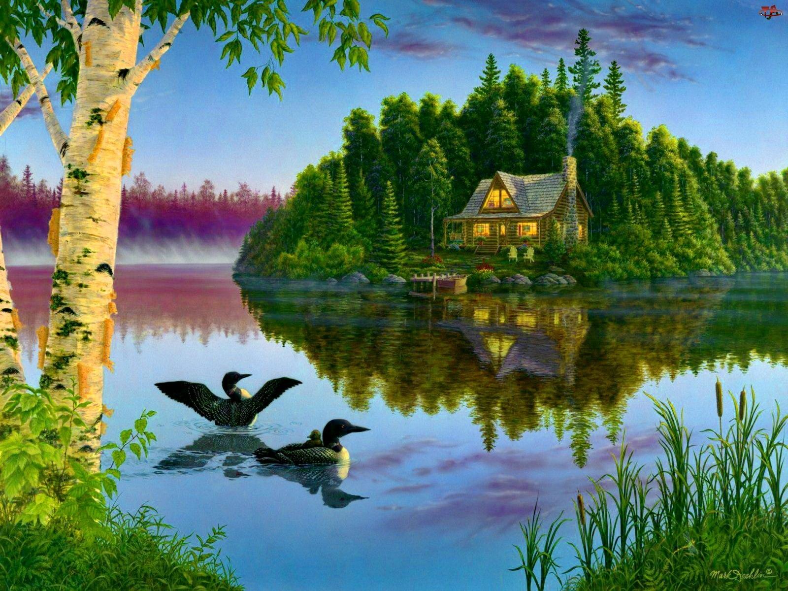 Malarstwo, Jezioro, Dom, Kaczki, Widok