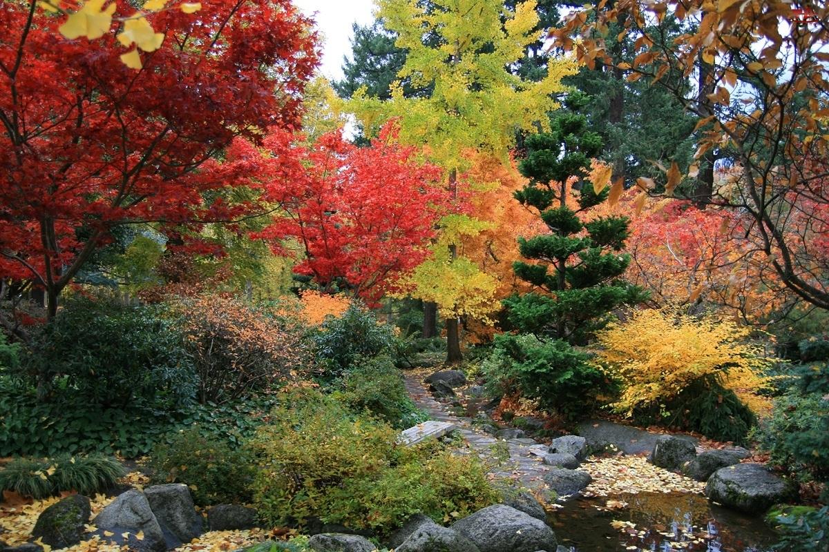 Jesień, Kamienie, Park, Woda