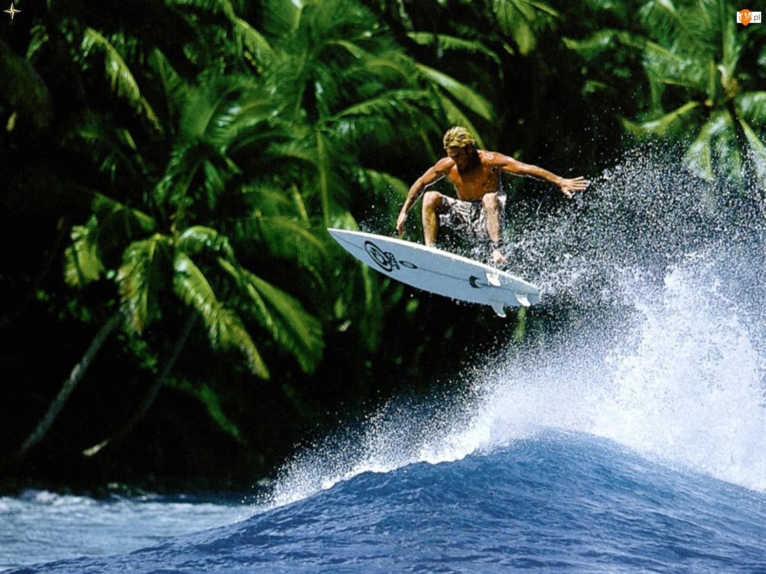 Palmy, Surfing, Fala