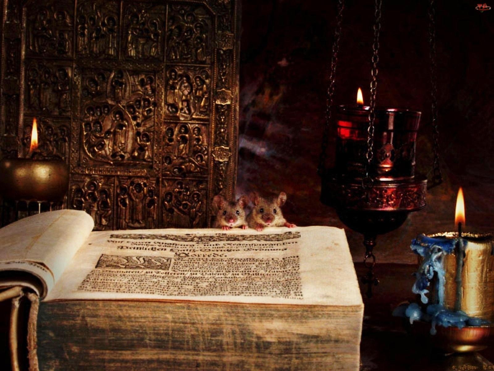 Myszki, Świece, Stara, Księga