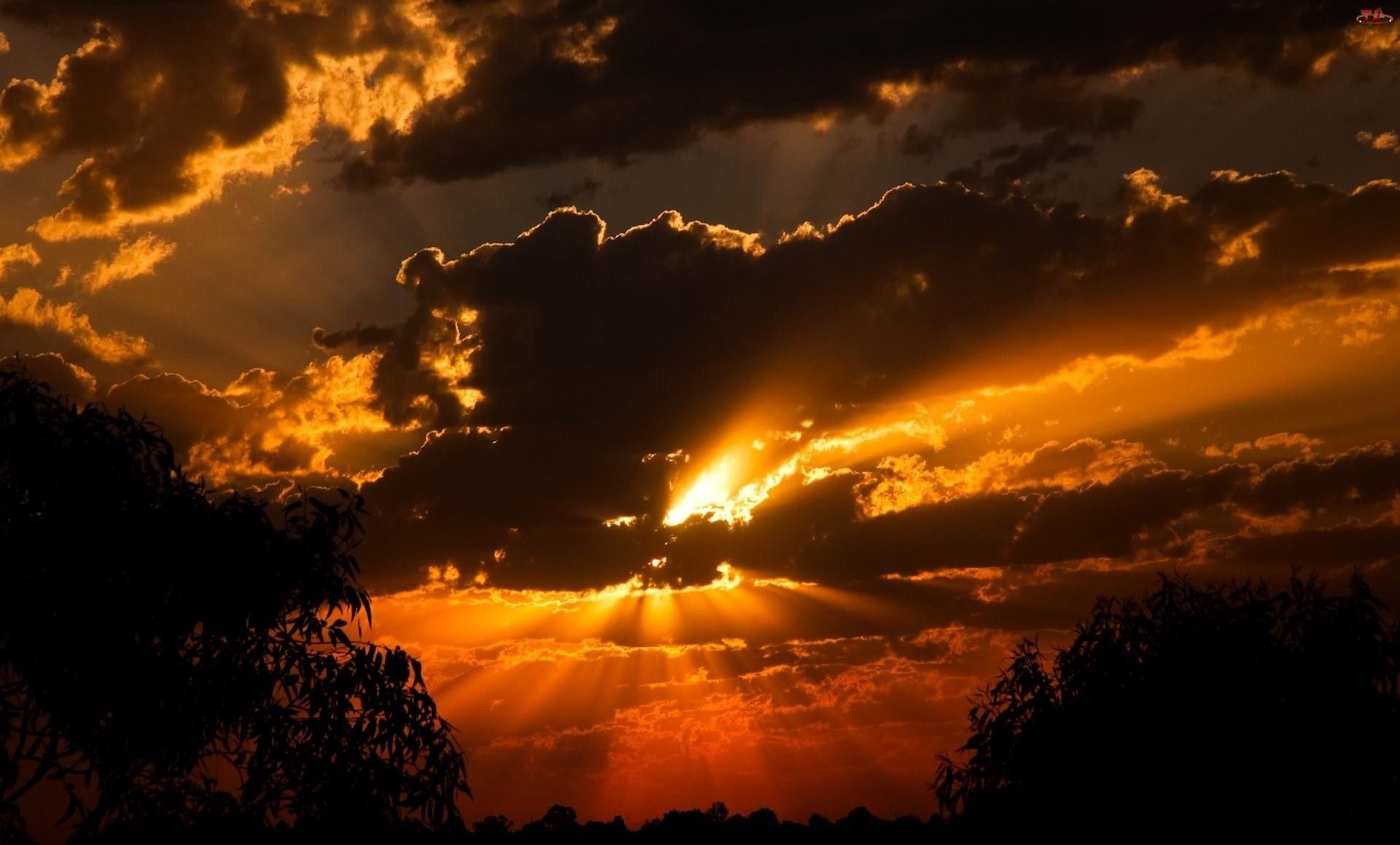 Zachód, Drzewa, Słońca, Chmury