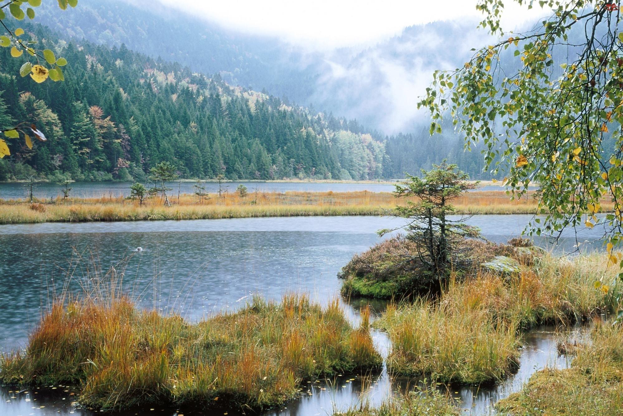 Jezioro, Zielone, Wzgórza
