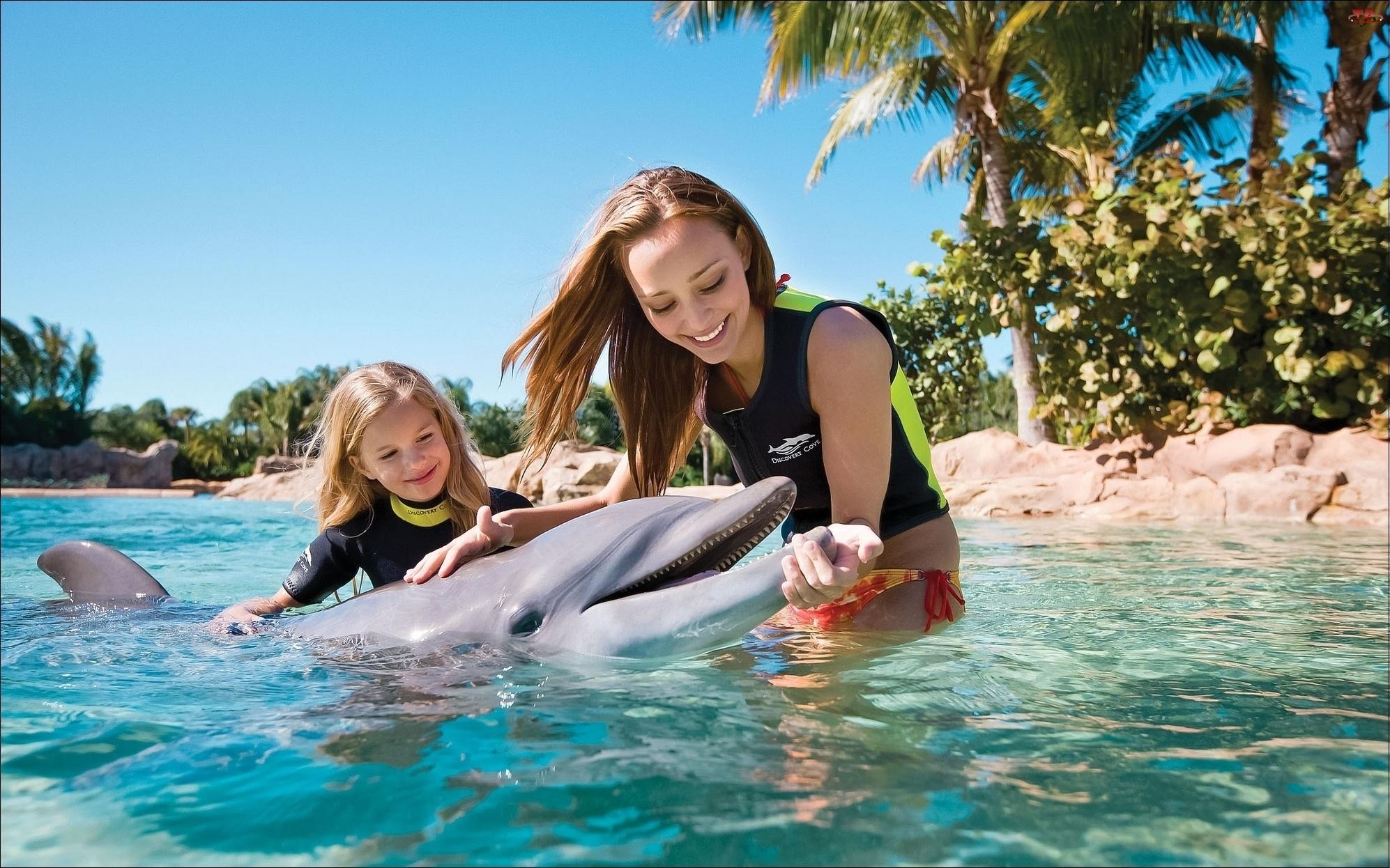 Delfin, Kobieta, Dziecko