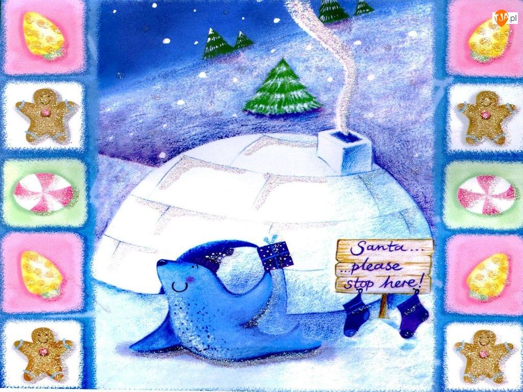 iglo, Boże Narodzenie, foczka