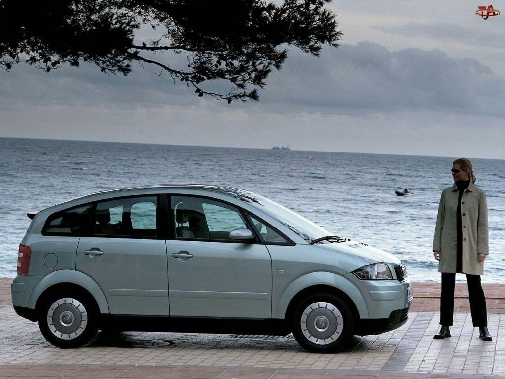 Audi A2, Drzewo