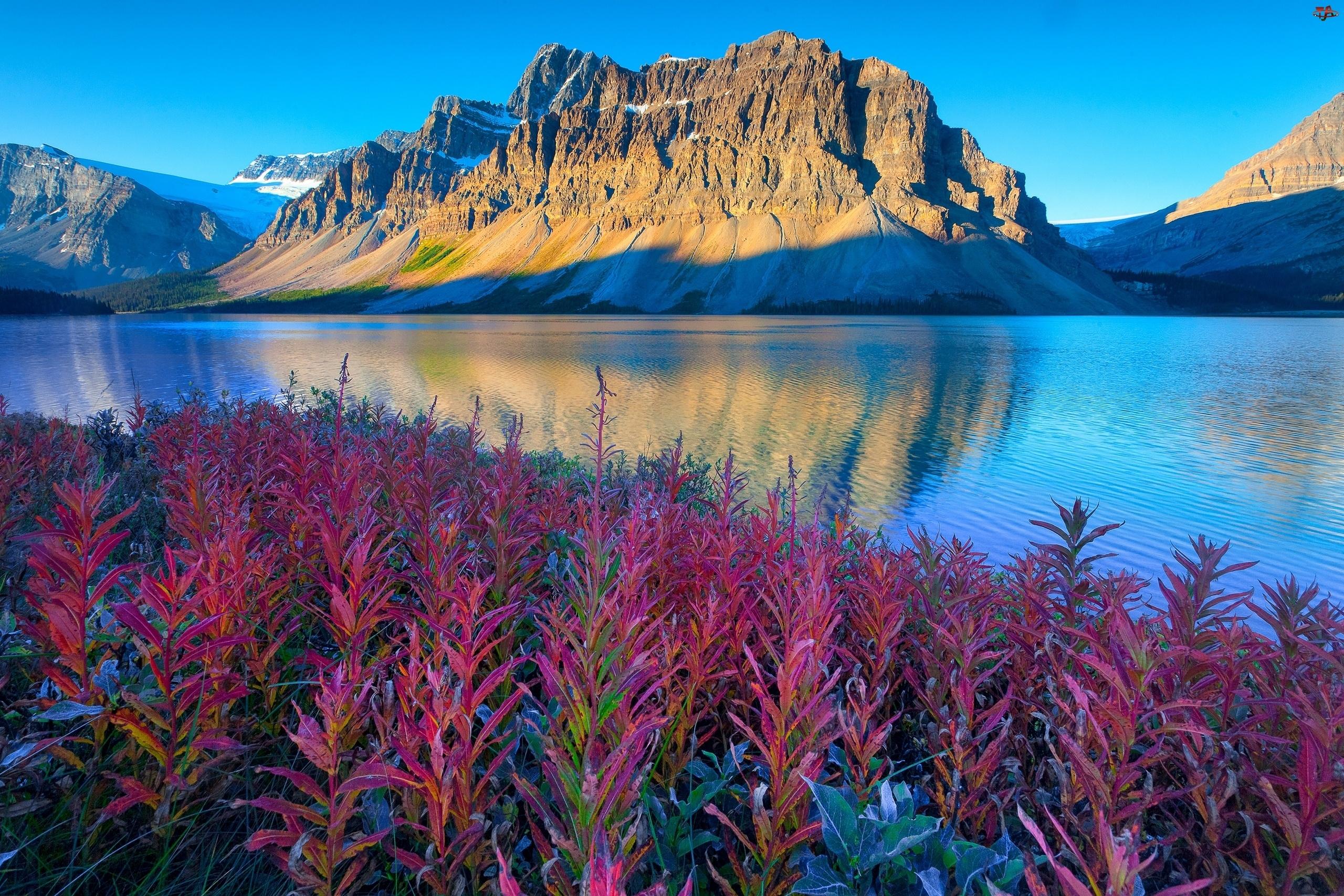 Kwiaty, Góry, Rzeka