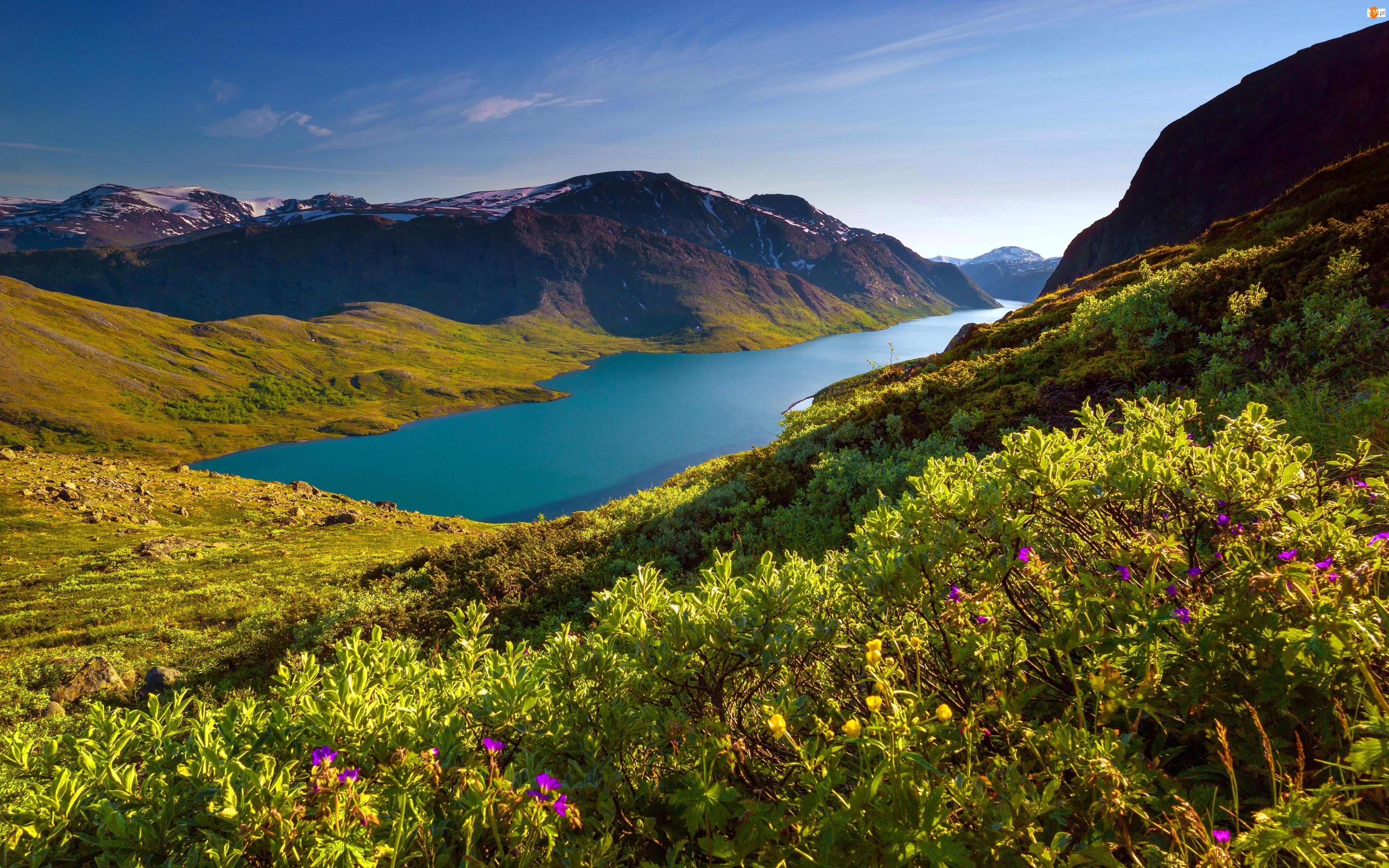 Norwegia, Jezioro, Góra, Besseggen
