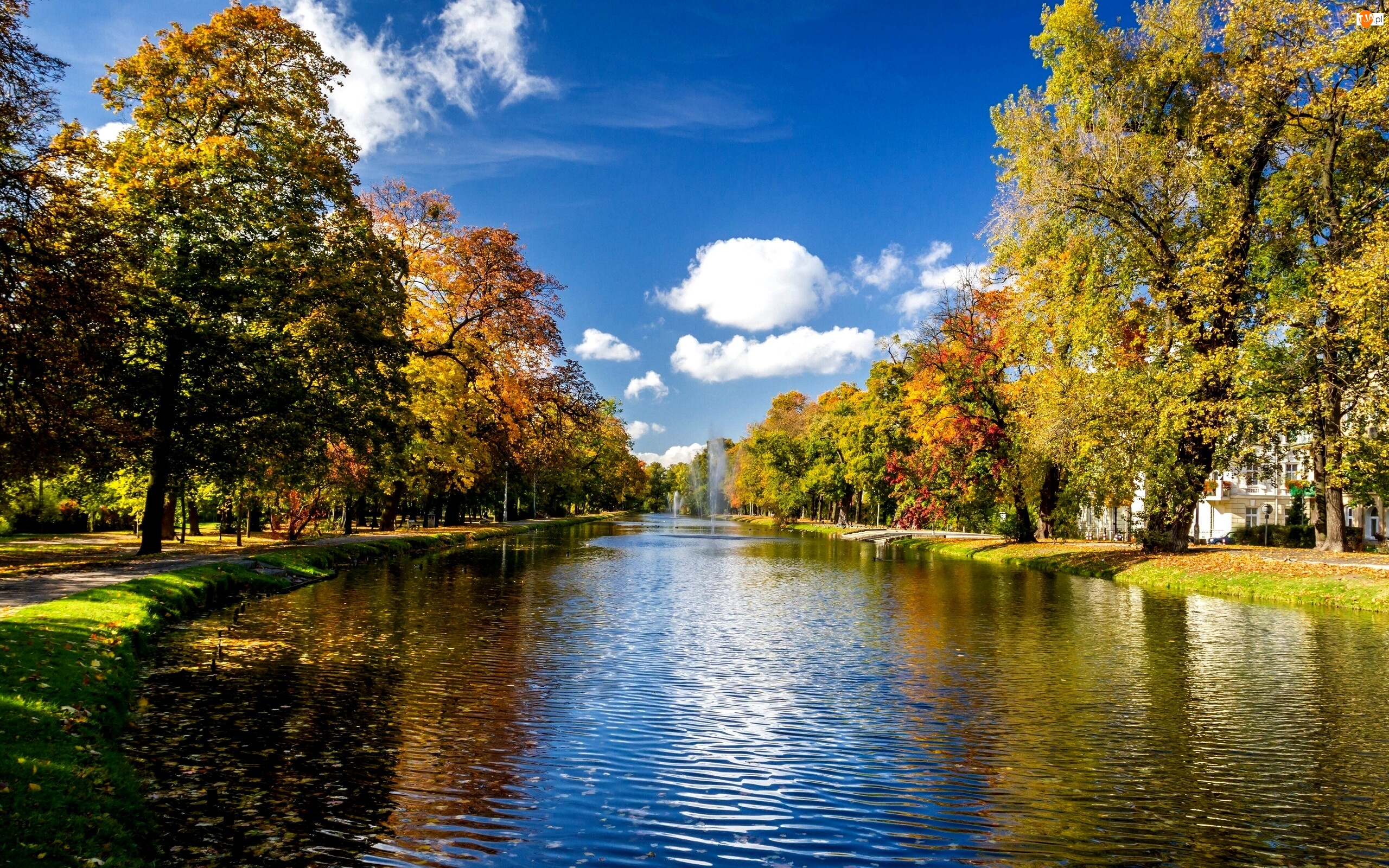 Park, Jesień, Rzeka, Fontanny