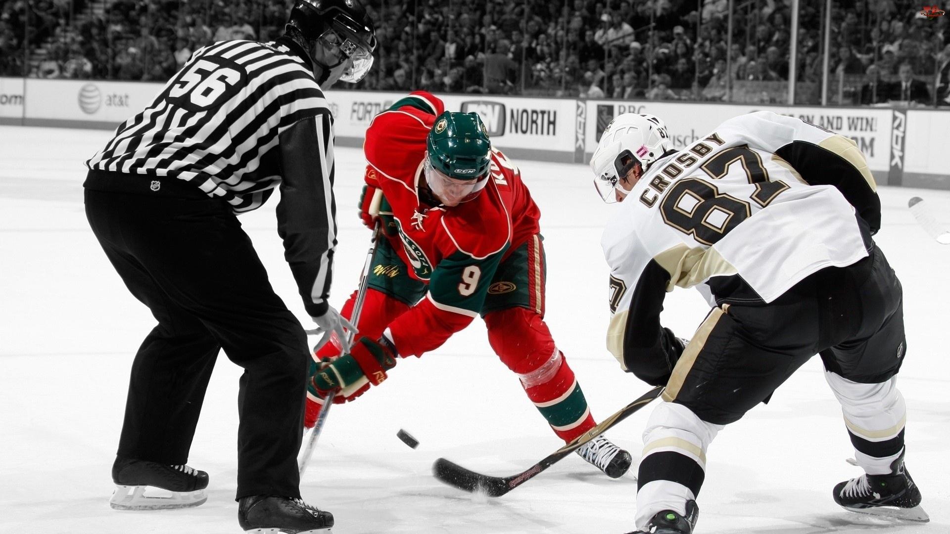 Sidney Crosby, Penguis, Hokej, Pittsburgh