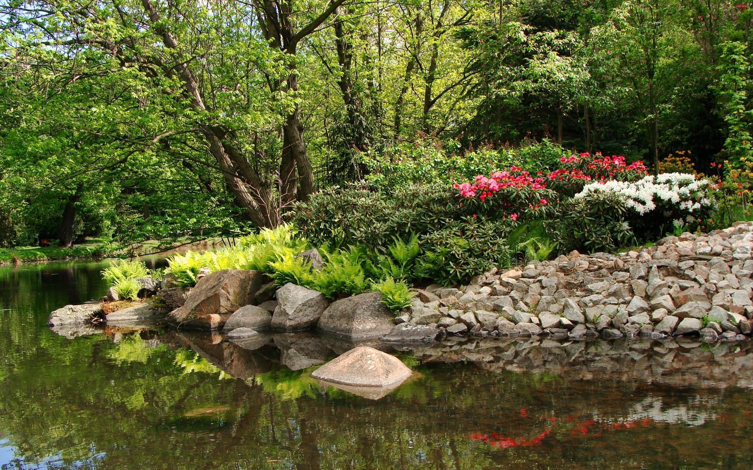 Drzewa, Rzeka, Kwiaty, Klomb, Kamienie