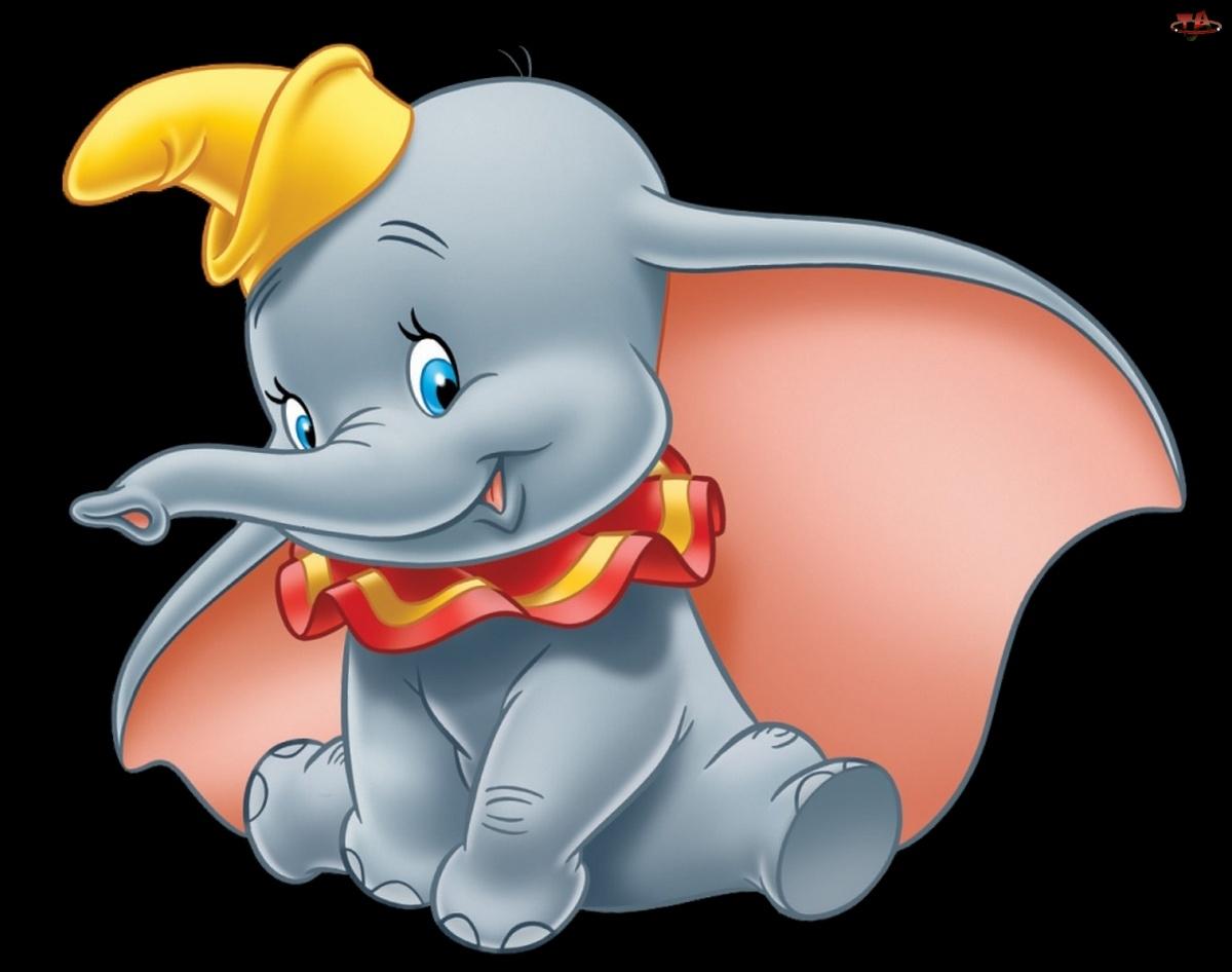 Uszy, Słonik, Dumbo