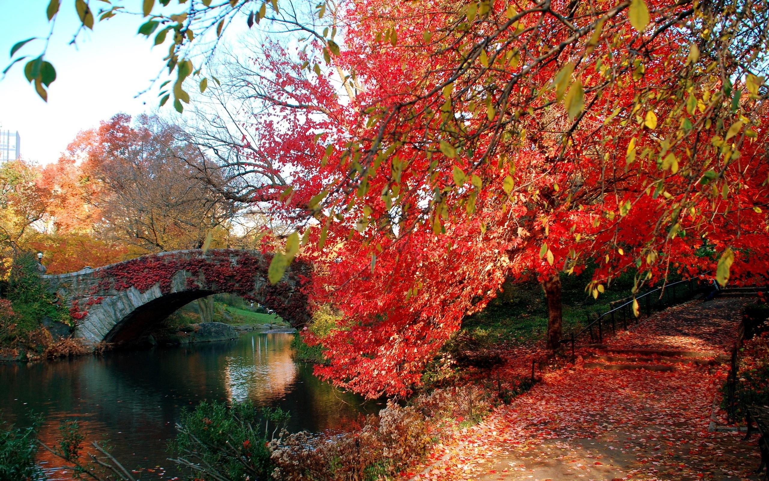 Jesień, Rzeka, Alejka, Most, Liście